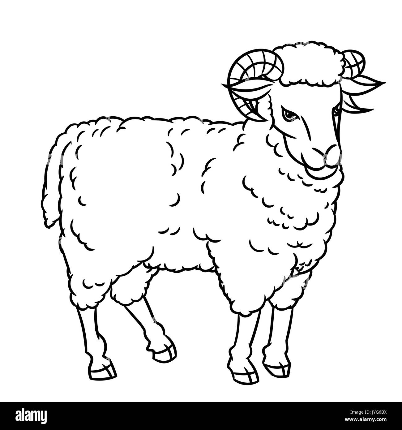 Hand drawing Sheep. farm animals set. Sketch graphic style. Design for education text book, coloring book. - Stock Vector