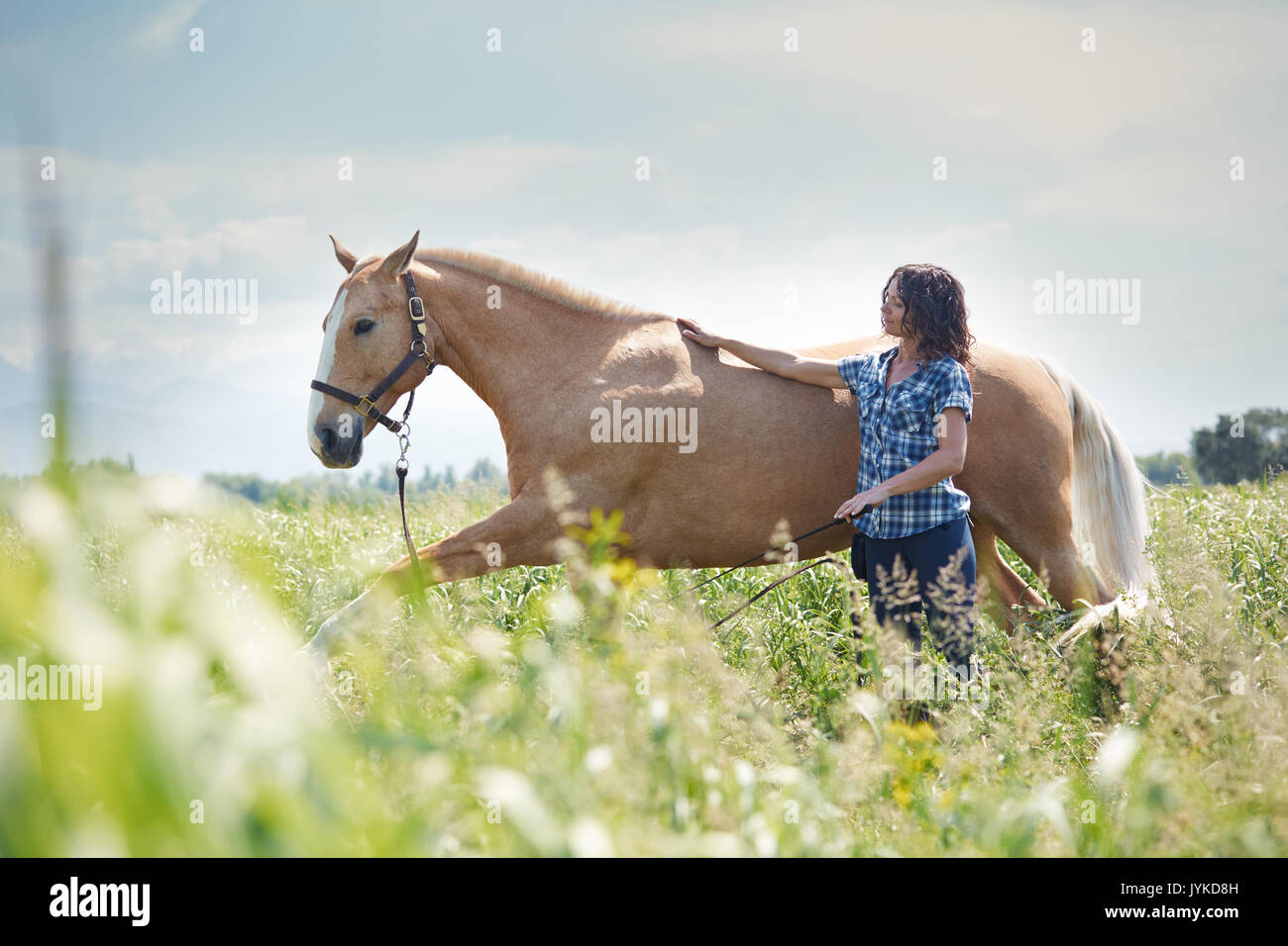 Woman training her horse at paddock Stock Photo