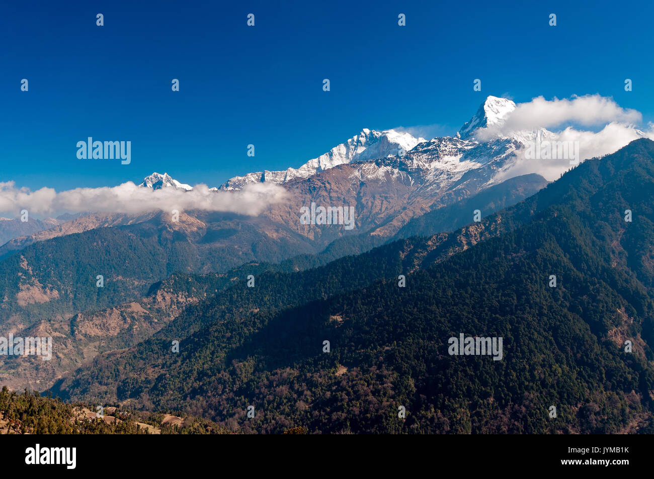 View of Fish Tail mountain or also know as Machapuchare in the Annapurna Himalayas of north central Nepal. It is revered by the local population as pa - Stock Image