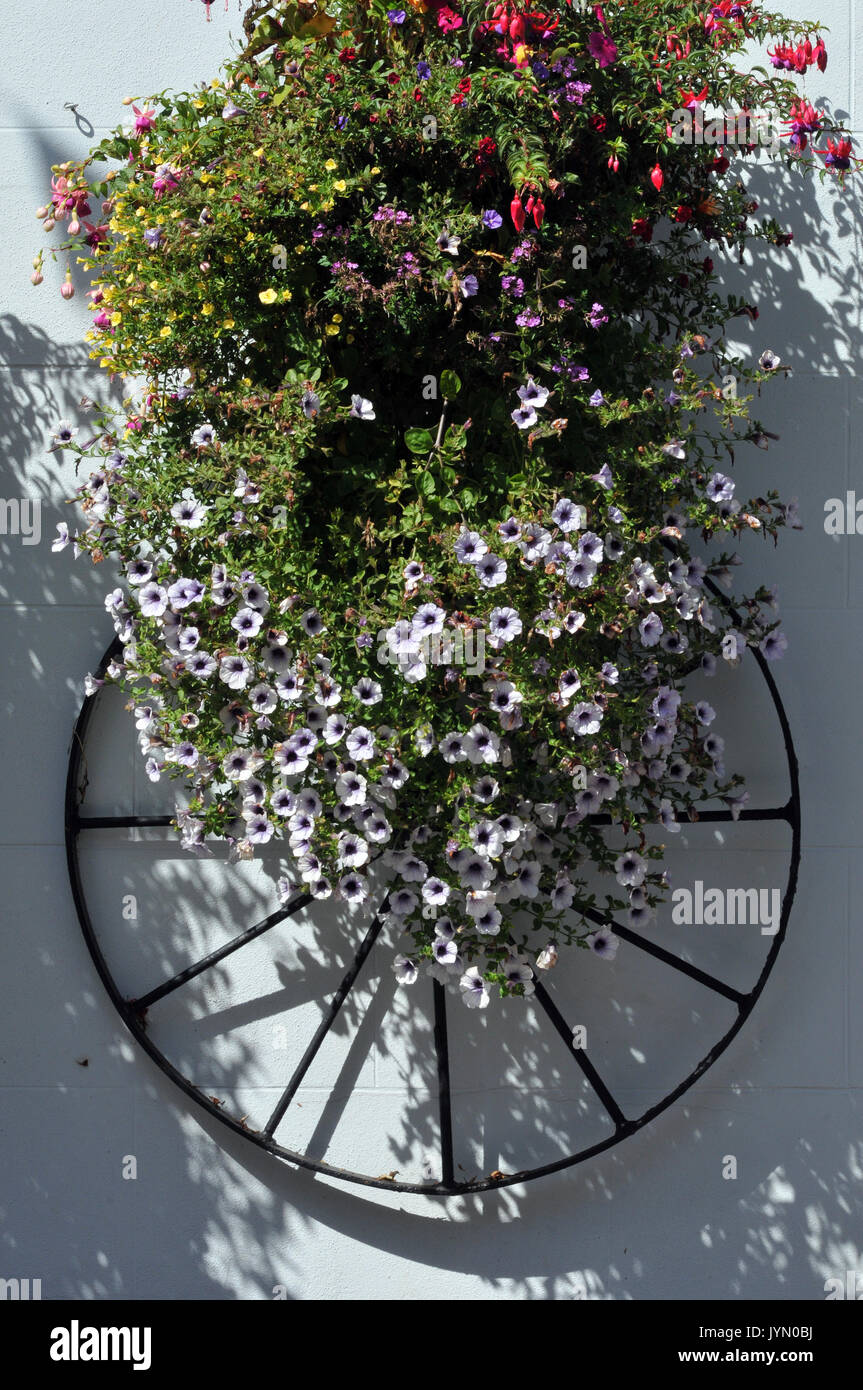 an old cartwheel and summer beautiful flowers on the wall of a country cottage - Stock Image