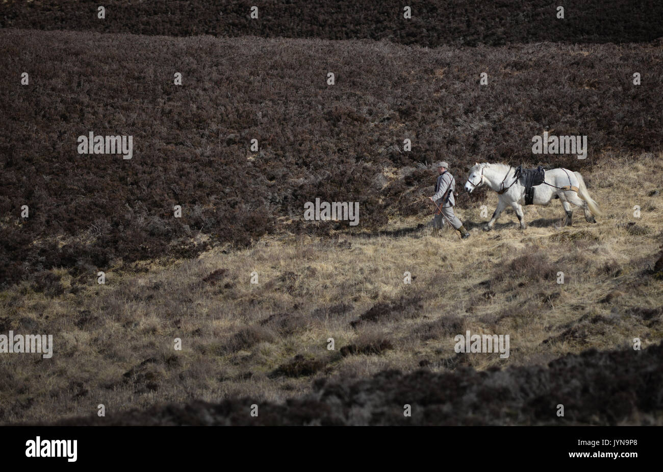 Deer stalking on the Blair Atholl estate in Scotland - Stock Image