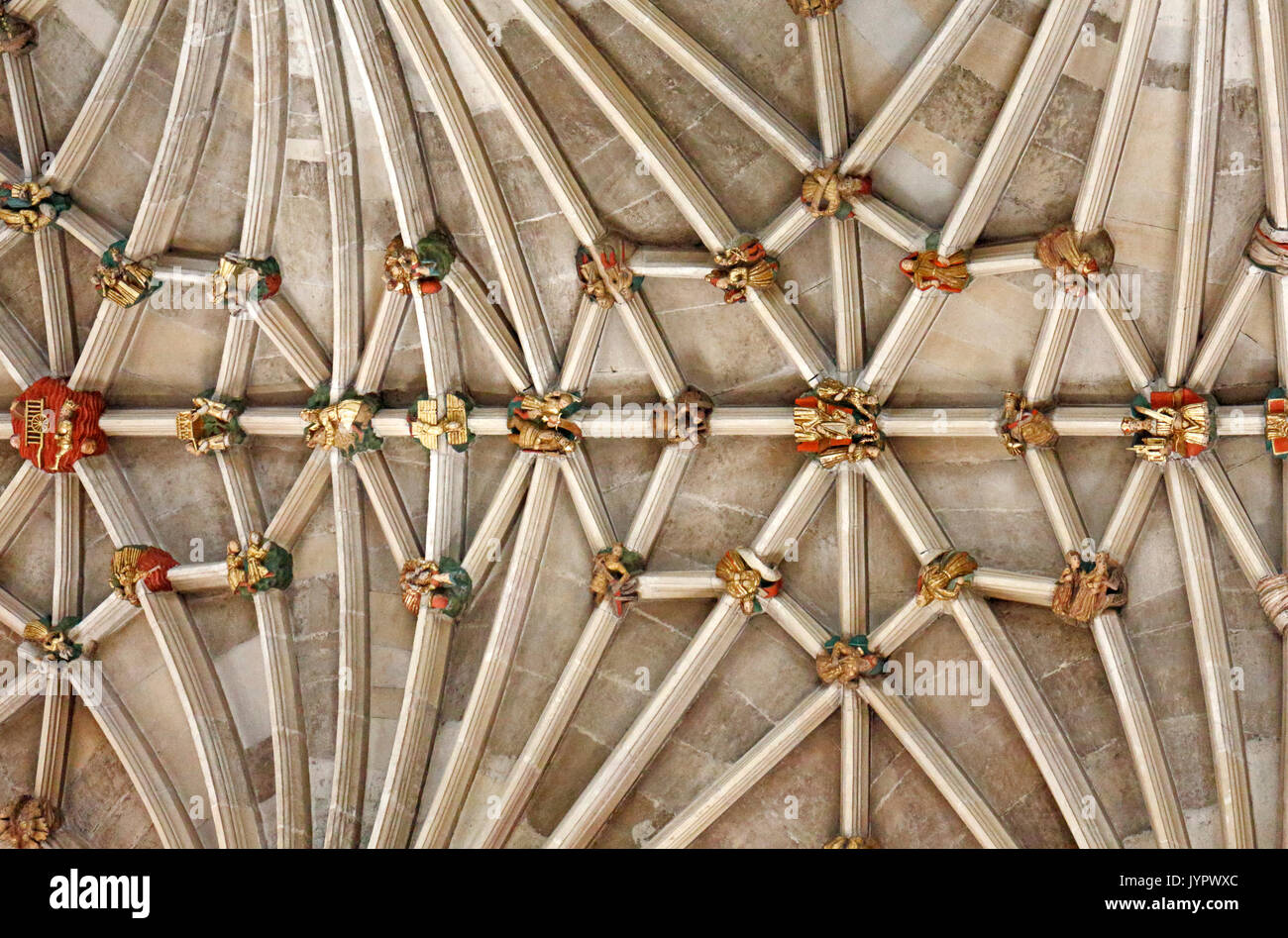 A view of the vaulting and bosses on the ceiling of the nave in the Anglican Cathedral in the City of Norwich, Norfolk, England, United Kingdom. - Stock Image