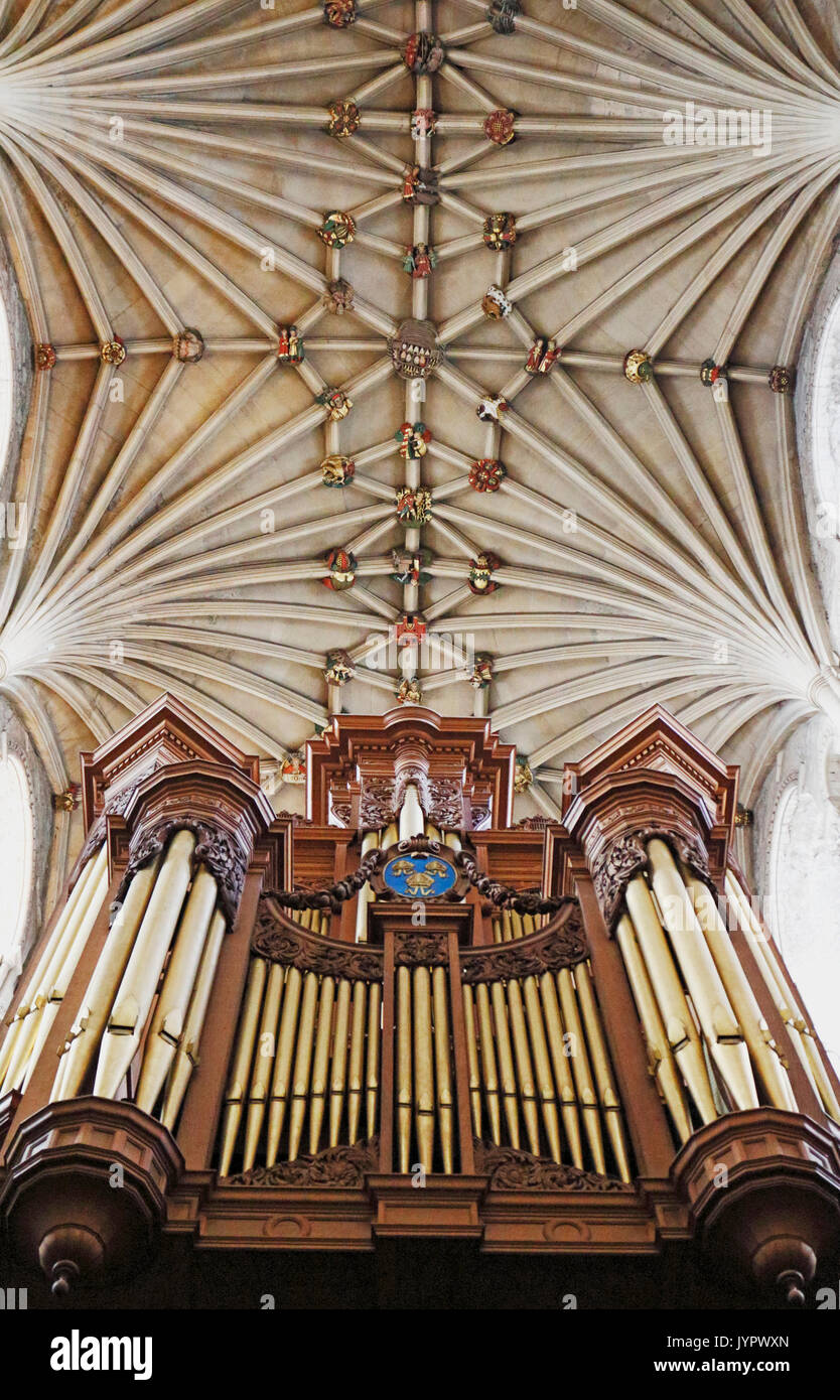 A view of the vaulting and bosses on the ceiling of the nave with organ loft in Norwich Cathedral, Norfolk, England, United Kingdom. - Stock Image