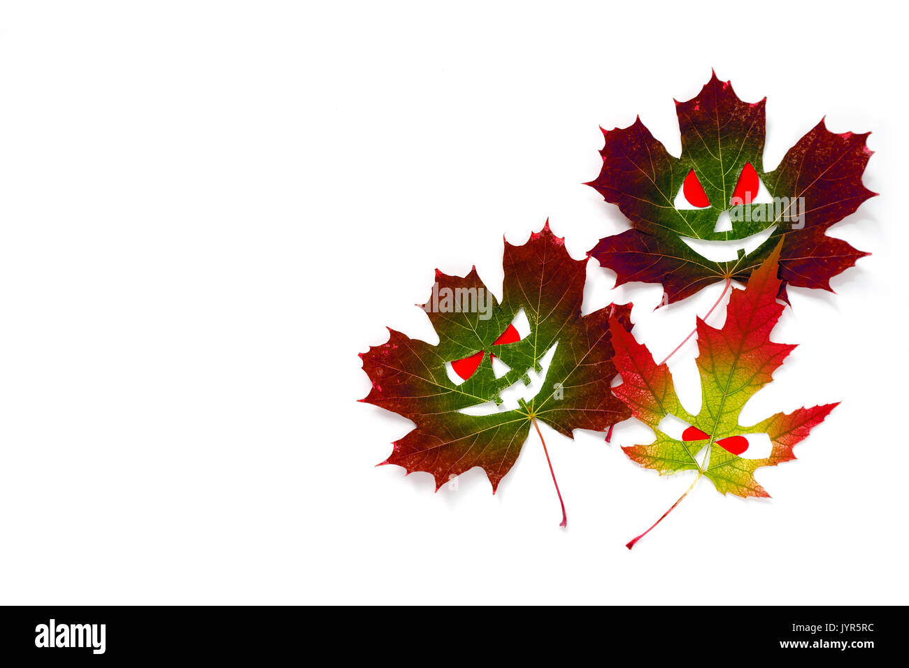 Halloween background - colored autumn maple leaves in the form of faces with red eyes. White background. Place for Stock Photo