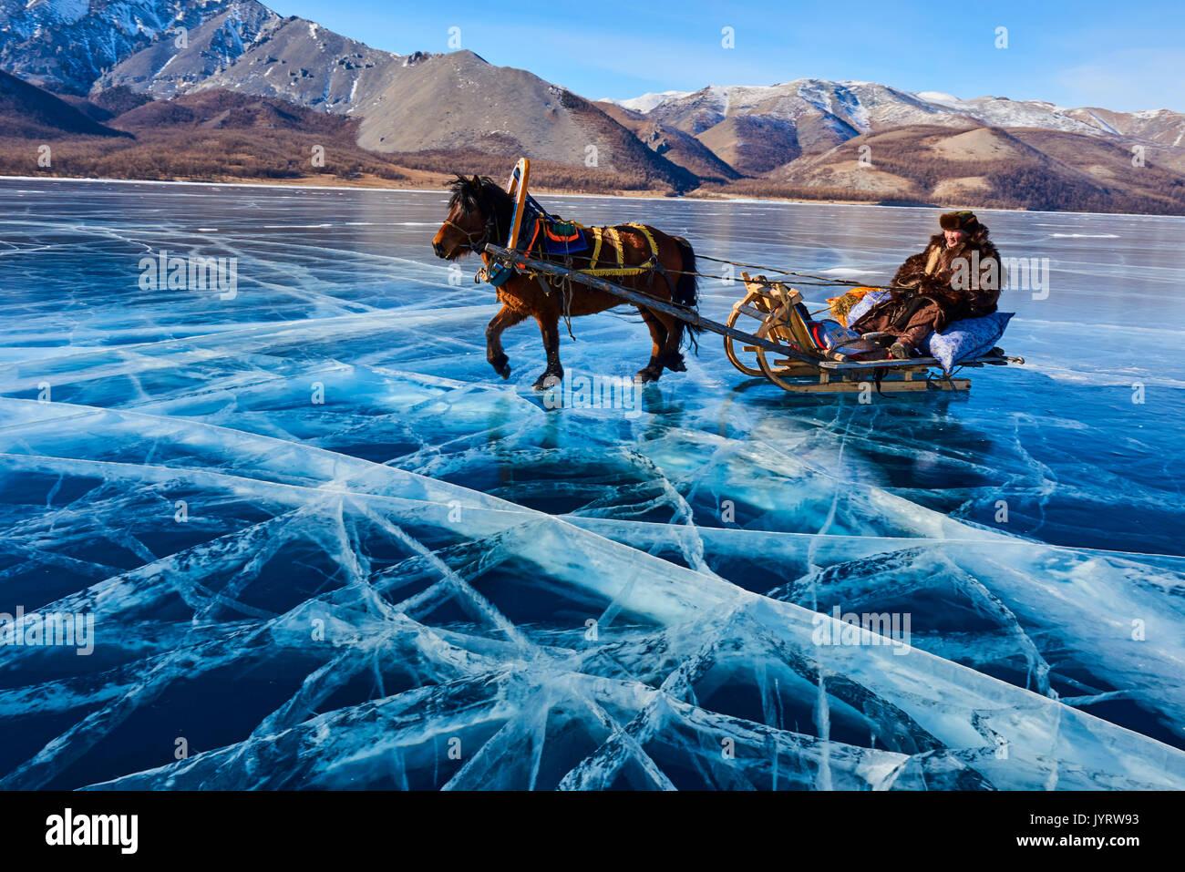 Mongolia, Khovsgol province, horse sled on the frozen lake of Khovsgol in winter - Stock Image