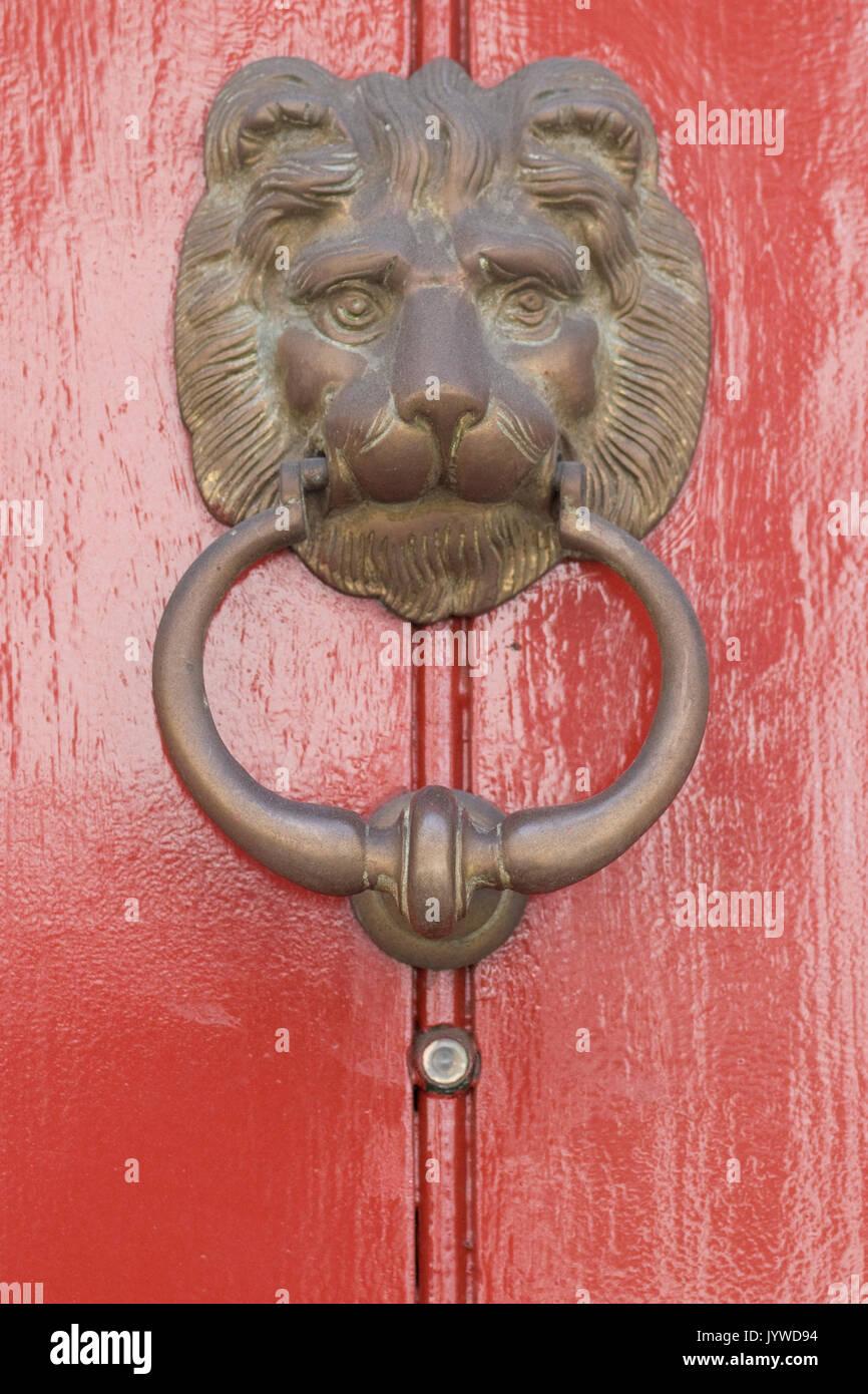 Brass lion door knocker on a red wooden door - Stock Image
