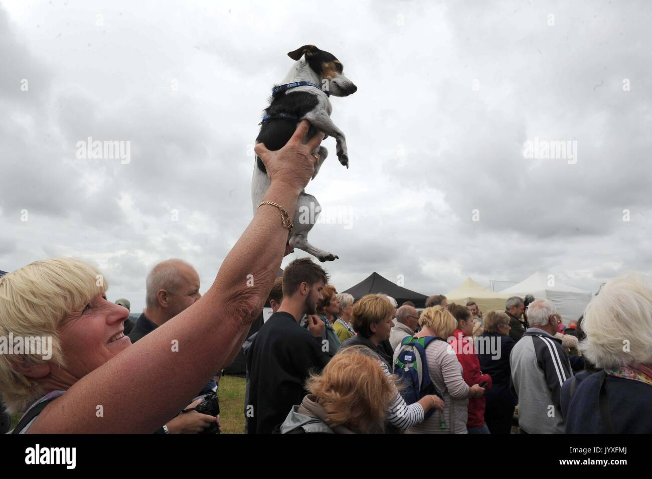Straining for a better view of the dog display, Buckham Fair, Dorset, UK Credit: Finnbarr Webster/Alamy Live News - Stock Image