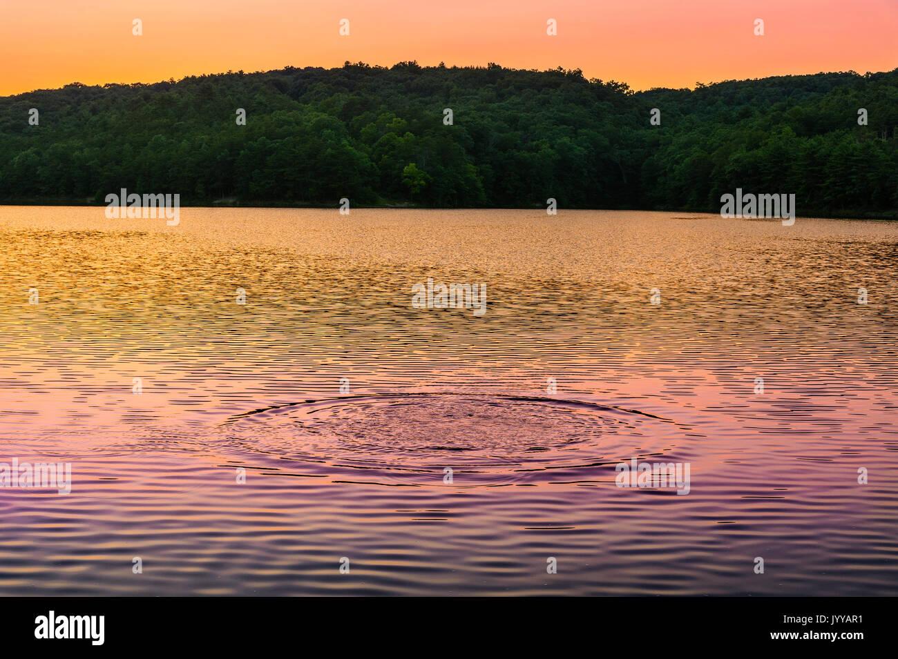 Colorful Circular Ripples On Lake At Sunset - Stock Image