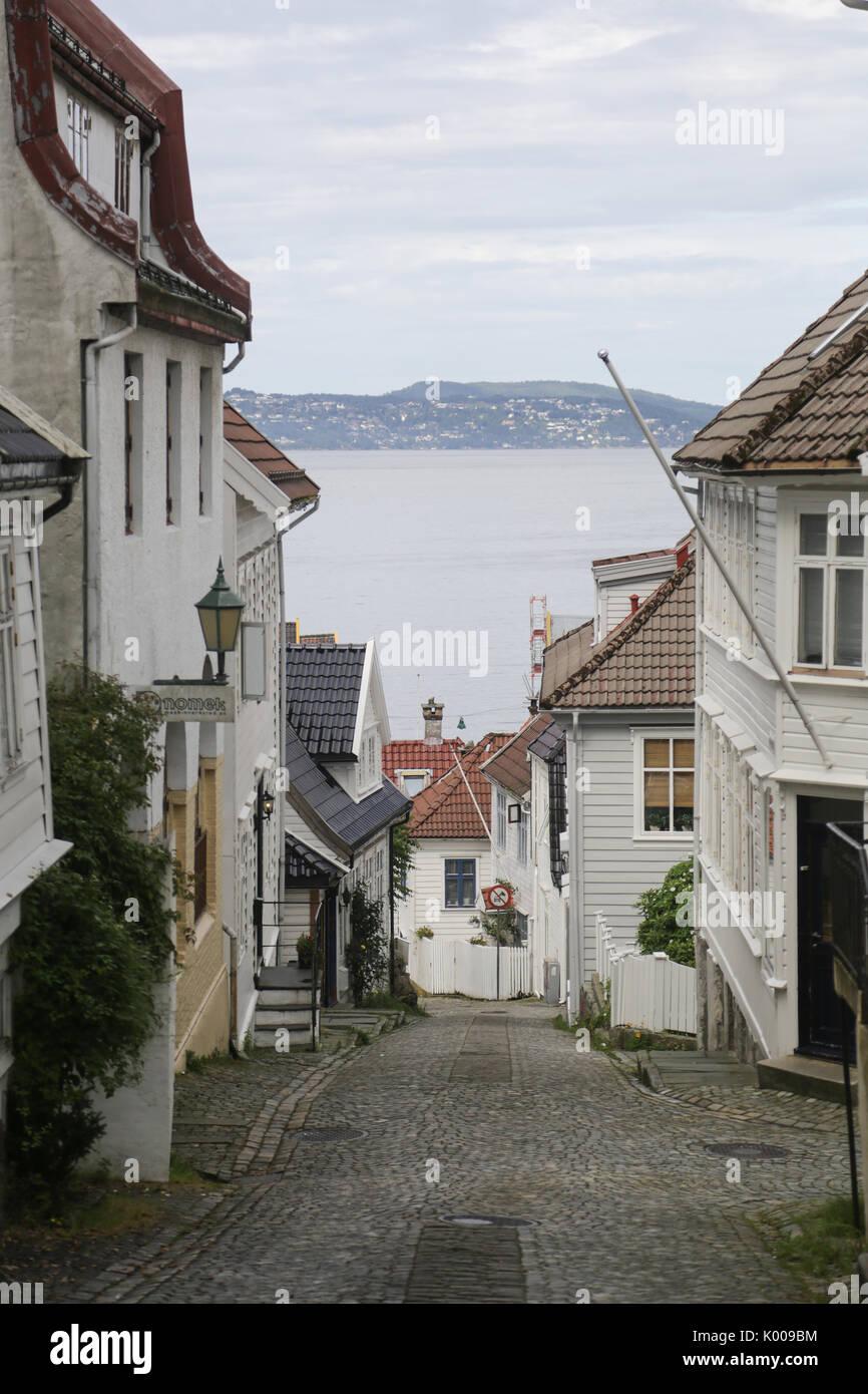 Ute Bergen