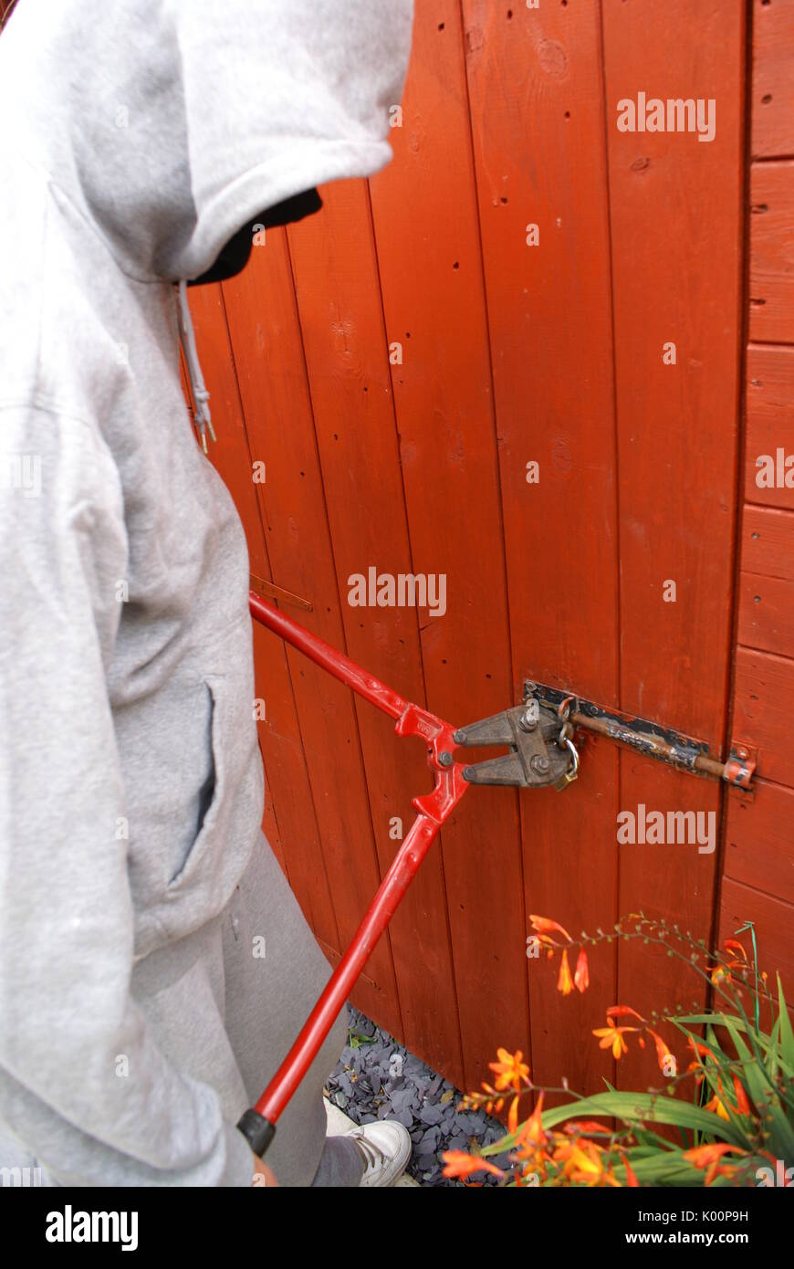 burglary, theft form garden shed - Stock Image