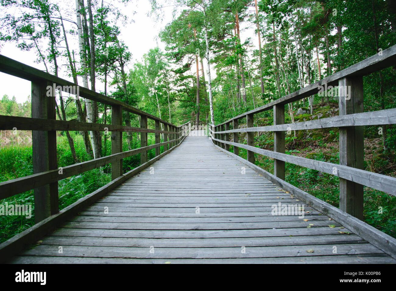 Wooden boardwalk. Taken with Nikon D5300 - Stock Image