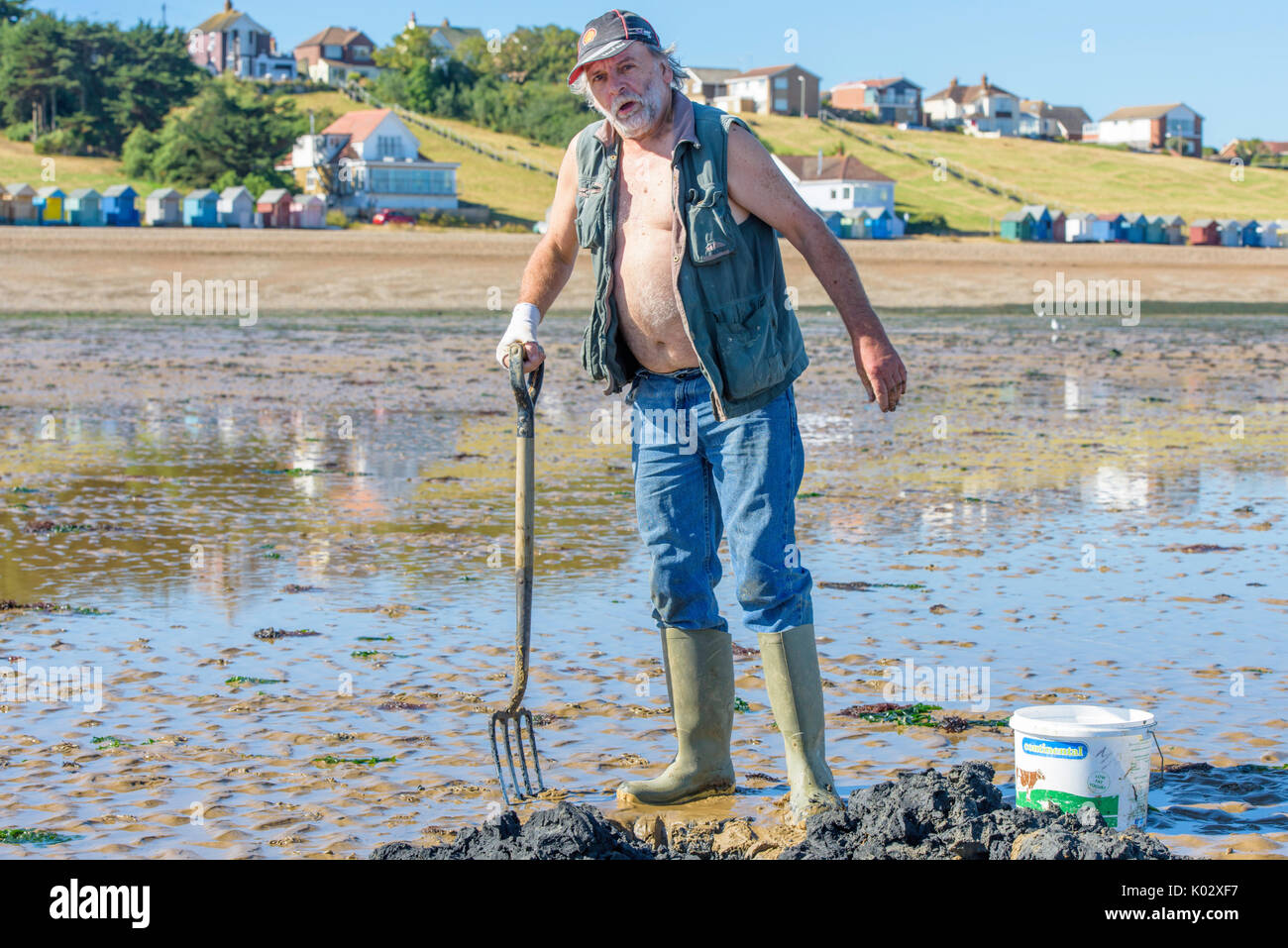 Lone fisherman digging for lugworms  to use for fishing bait on the beach at Herne Bay, Kent, England, UK. - Stock Image
