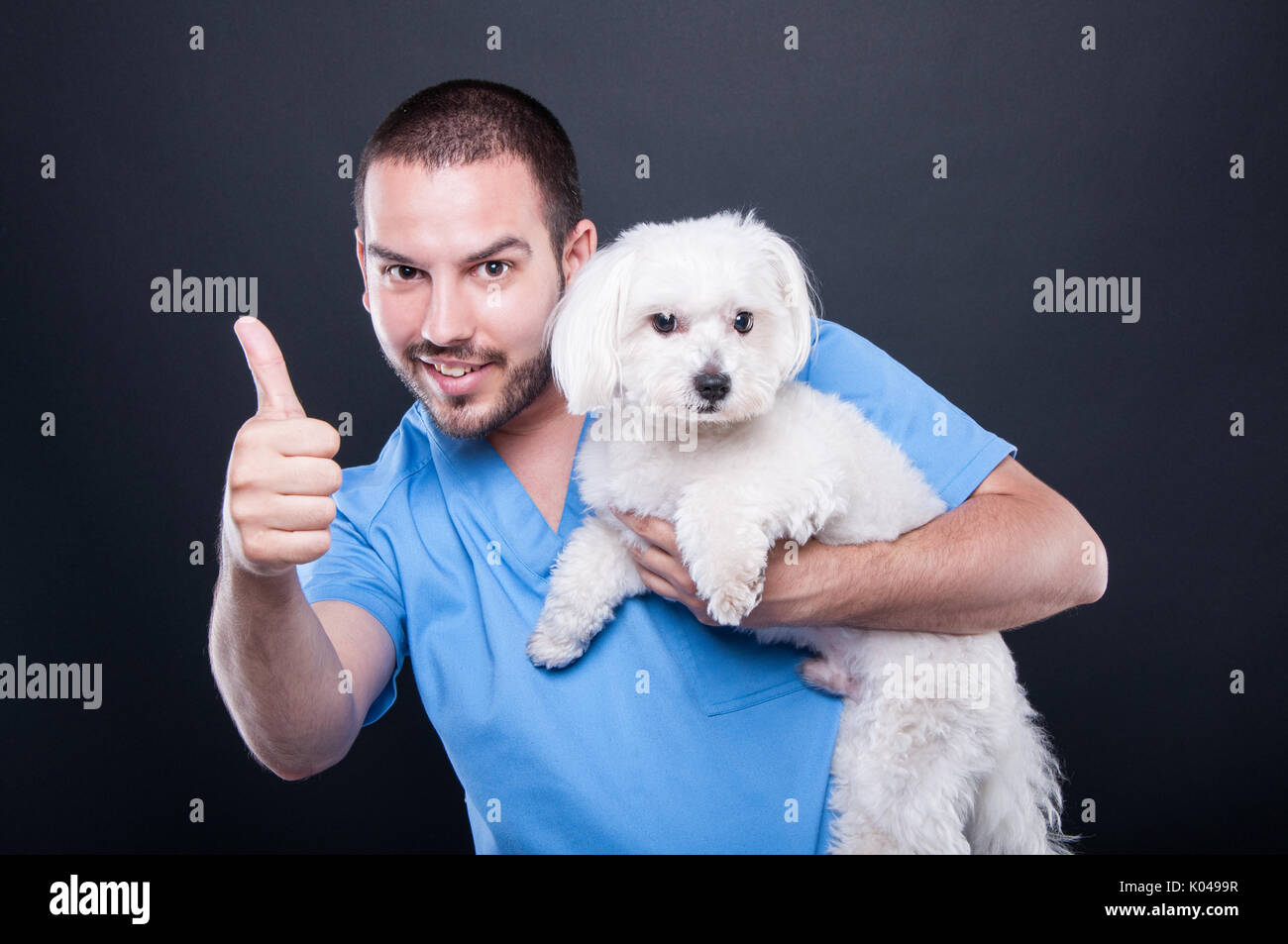 Veterinary wearing scrubs holding cute white dog showing like gesture and smiling on black background - Stock Image