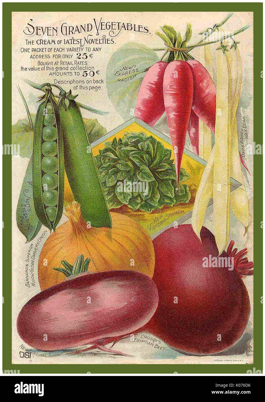 Buist/'s Tomato Vintage Vegetables Seed Packet Catalogue Advertisement Poster