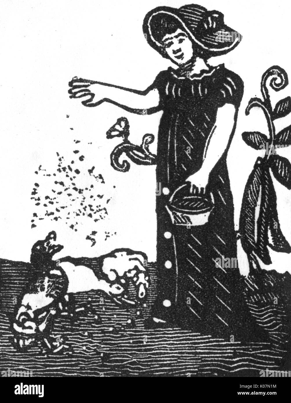 A woman feeding ducks     Date: 1800s - Stock Image