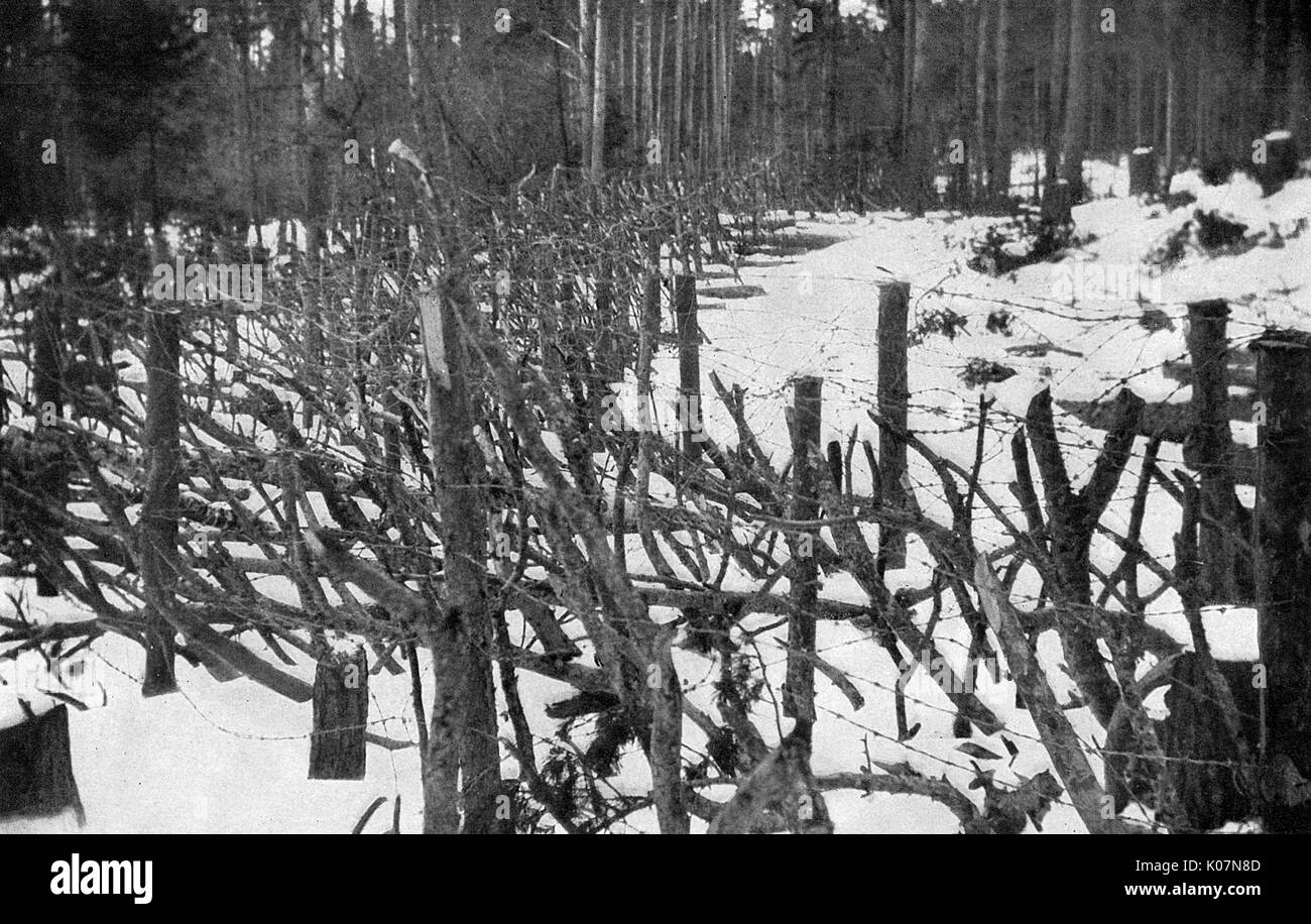 Pointed stakes on the Eastern Front, Russia, First World War, to ...