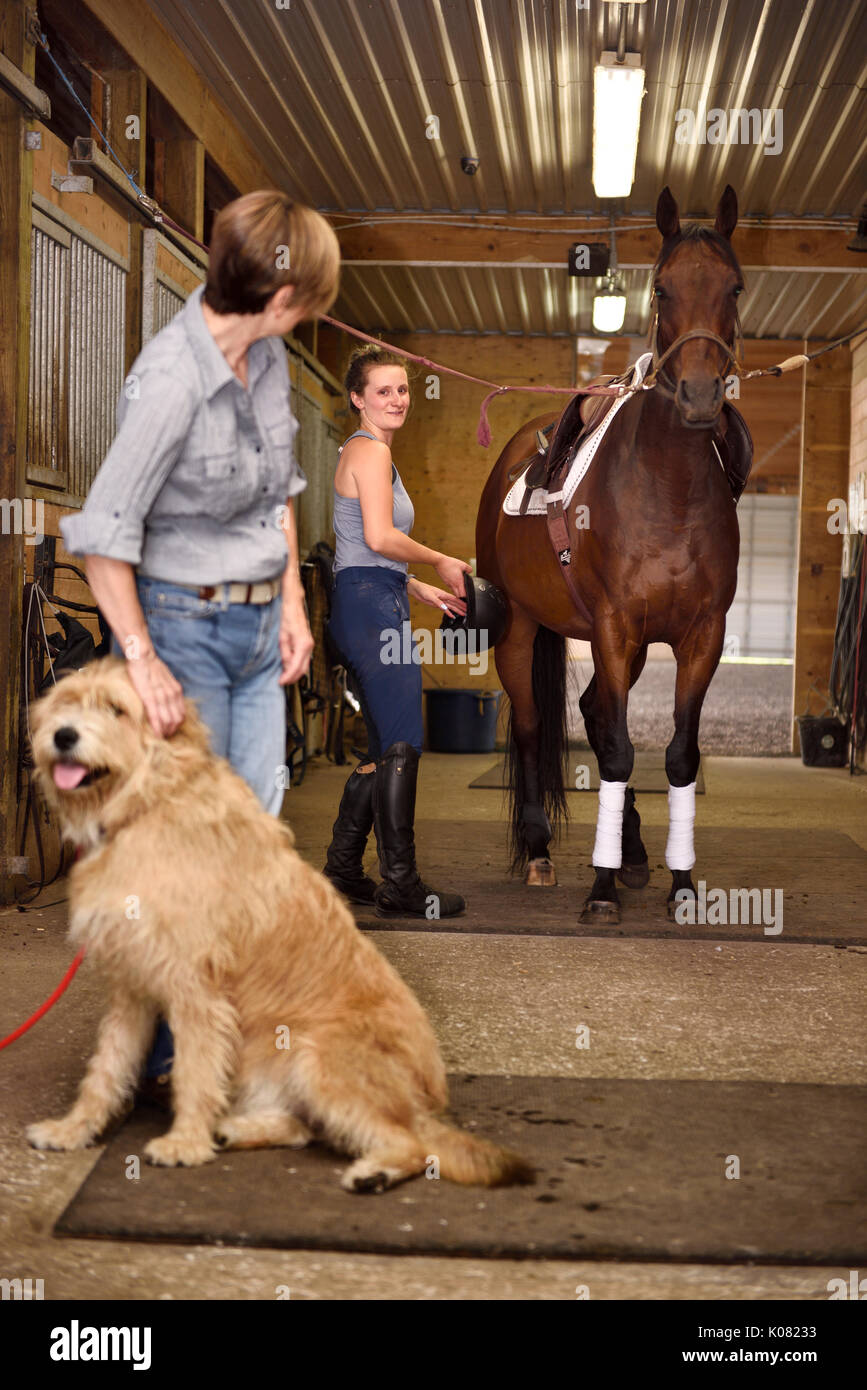 Grinning young woman ready to ride tacked up thoroughbred mare in cross ties with watching mother petting sitting dog in barn stables - Stock Image
