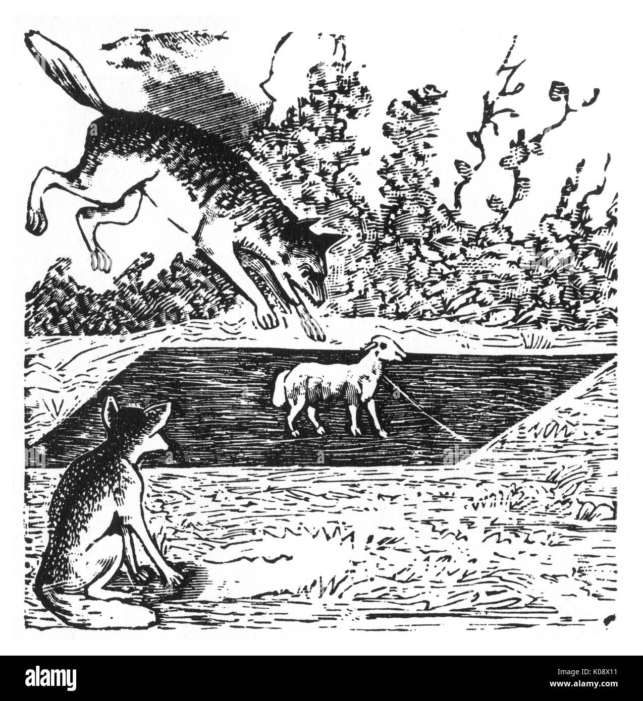 Story of the Wolf and the Fox, originally a Brothers Grimm fairytale.      Date: circa 1900s - Stock Image