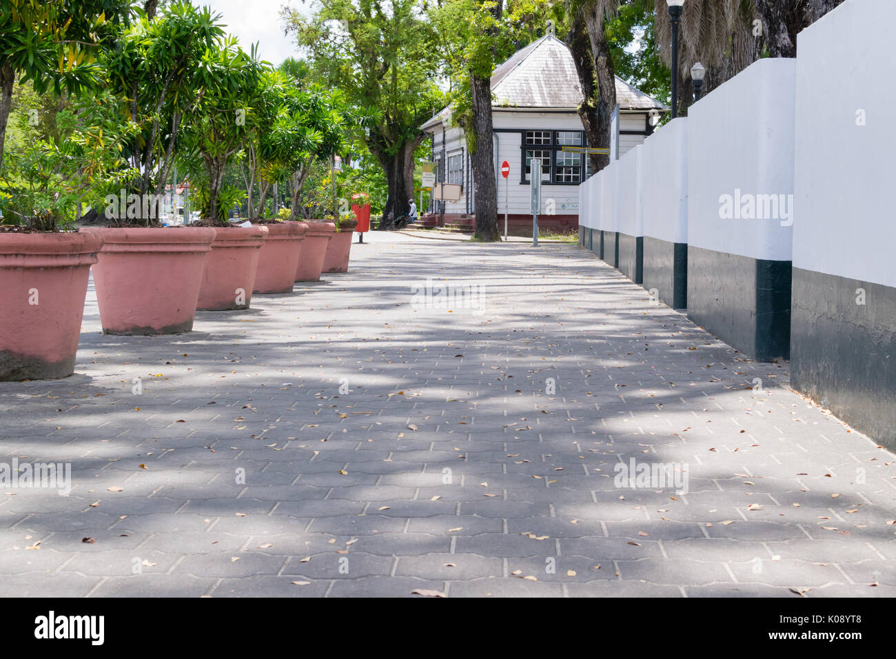 Suriname Waterkant walking pad - Stock Image