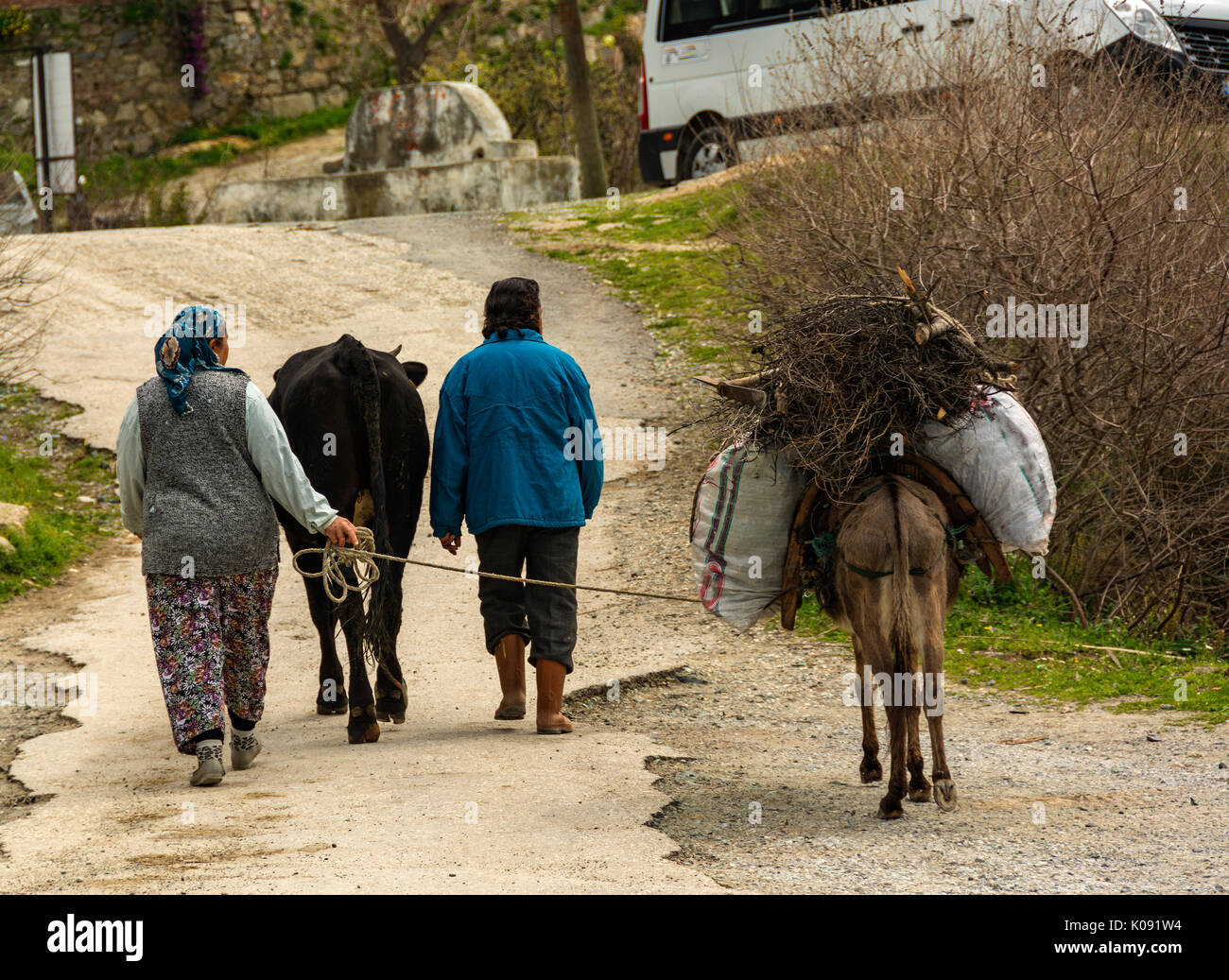 Villagers returning to their homes with their animals Stock
