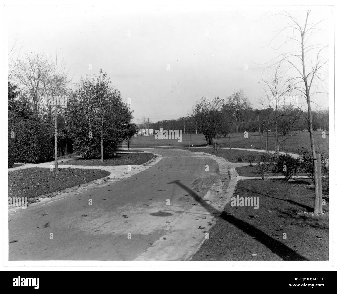 View of a curved and paved street near Guilford, trimmed grass lines borders the street as well as some trees, Baltimore, Maryland, 1910. This image is from a series documenting the construction and sale of homes in the Roland Park/Guilford neighborhood of Baltimore, a streetcar suburb and one of the first planned communities in the United States. The neighborhood was segregated, and is considered an early example of the enforcement of racial segregation through the use of restricted covenants. - Stock Image