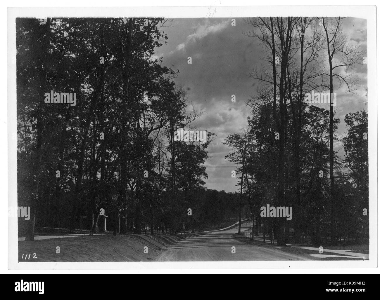 Landscape shot of a road lined by tall trees with leaves, many clouds in the sky, Roland Park/Guilford, Baltimore, Maryland, 1910. This image is from a series documenting the construction and sale of homes in the Roland Park/Guilford neighborhood of Baltimore, a streetcar suburb and one of the first planned communities in the United States. The neighborhood was segregated, and is considered an early example of the enforcement of racial segregation through the use of restricted covenants. - Stock Image