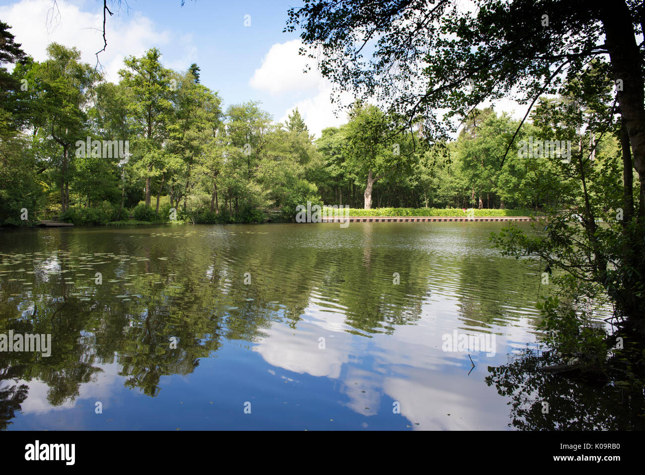 Silt Lake in Tilgate Park in Crawley, West Sussex, England, UK - Stock Image