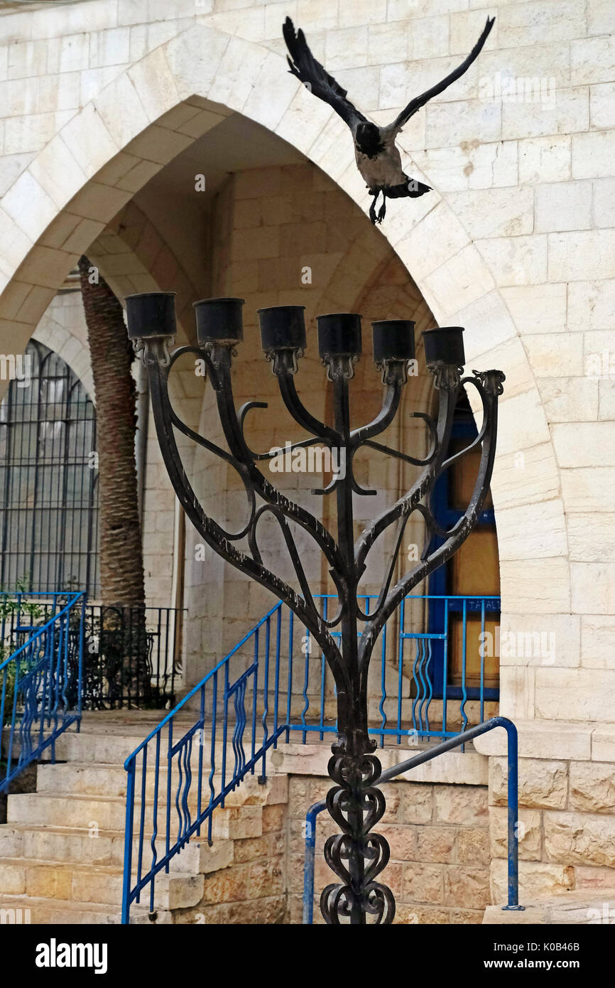 Crow flying over the Jewish Menorah at the entrance to the Conegliano Veneto Synagogue and the Italian Jewish Museum - Stock Image