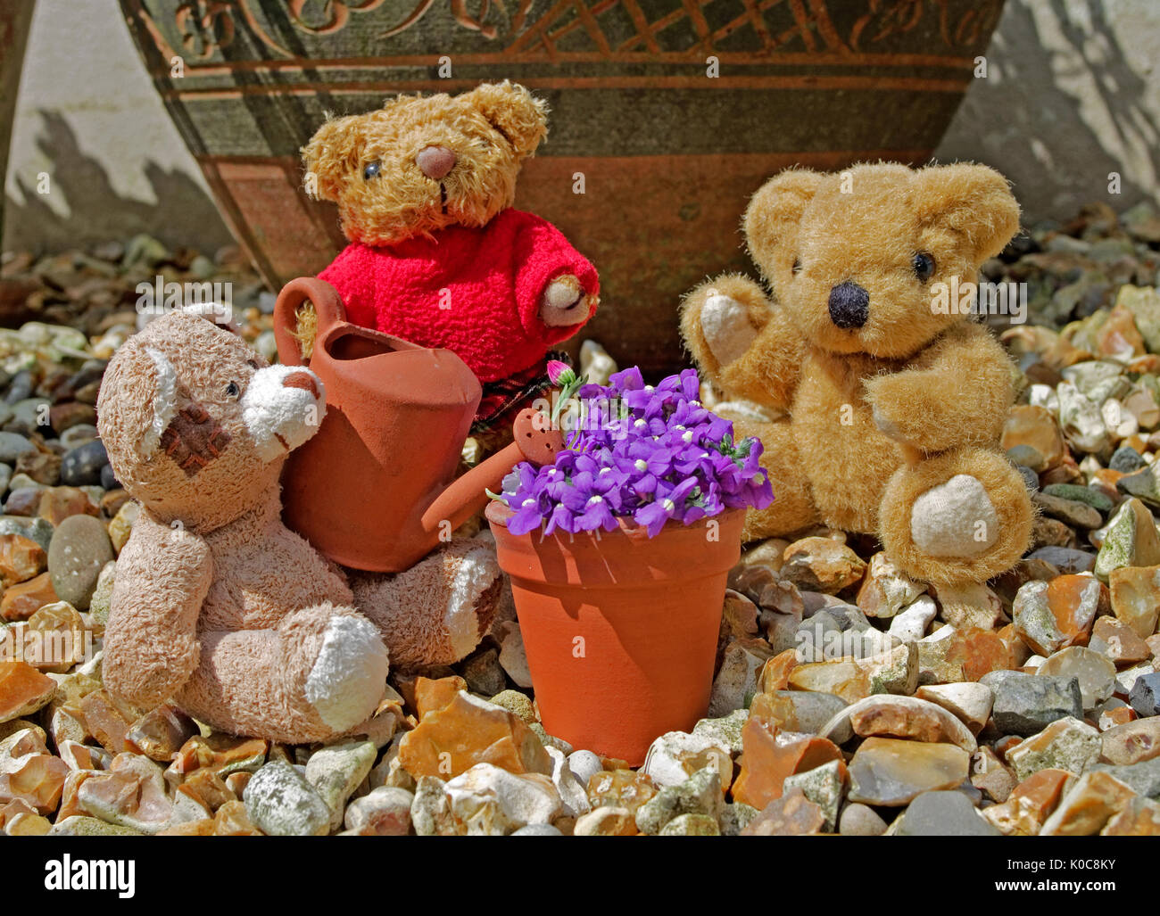 Tableau of miniature teddy bears in garden in summer sunshine with miniature clay watering can and flower pot. - Stock Image