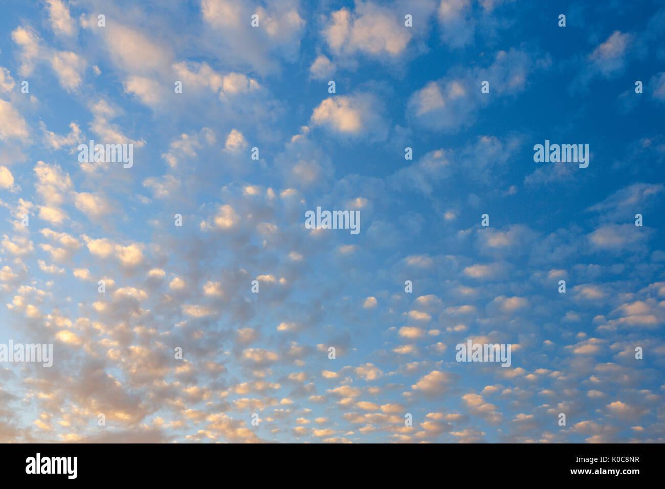 Wolken am blauen Himmel - Stock Image
