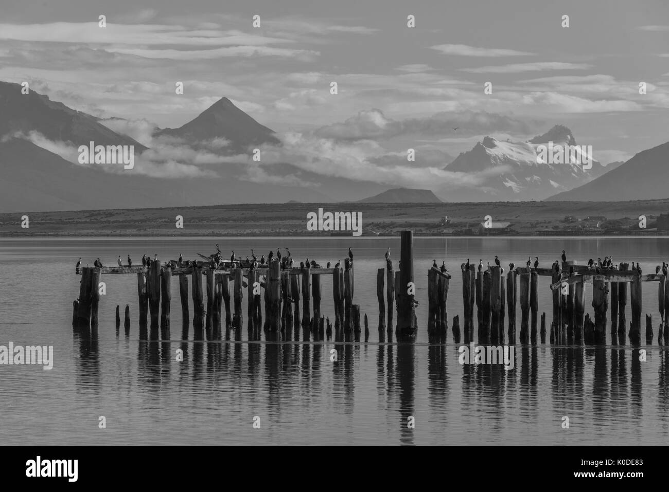 South America; Patagonia,Puerto Natales,Magallanes and Antartica Chilena Region Stock Photo