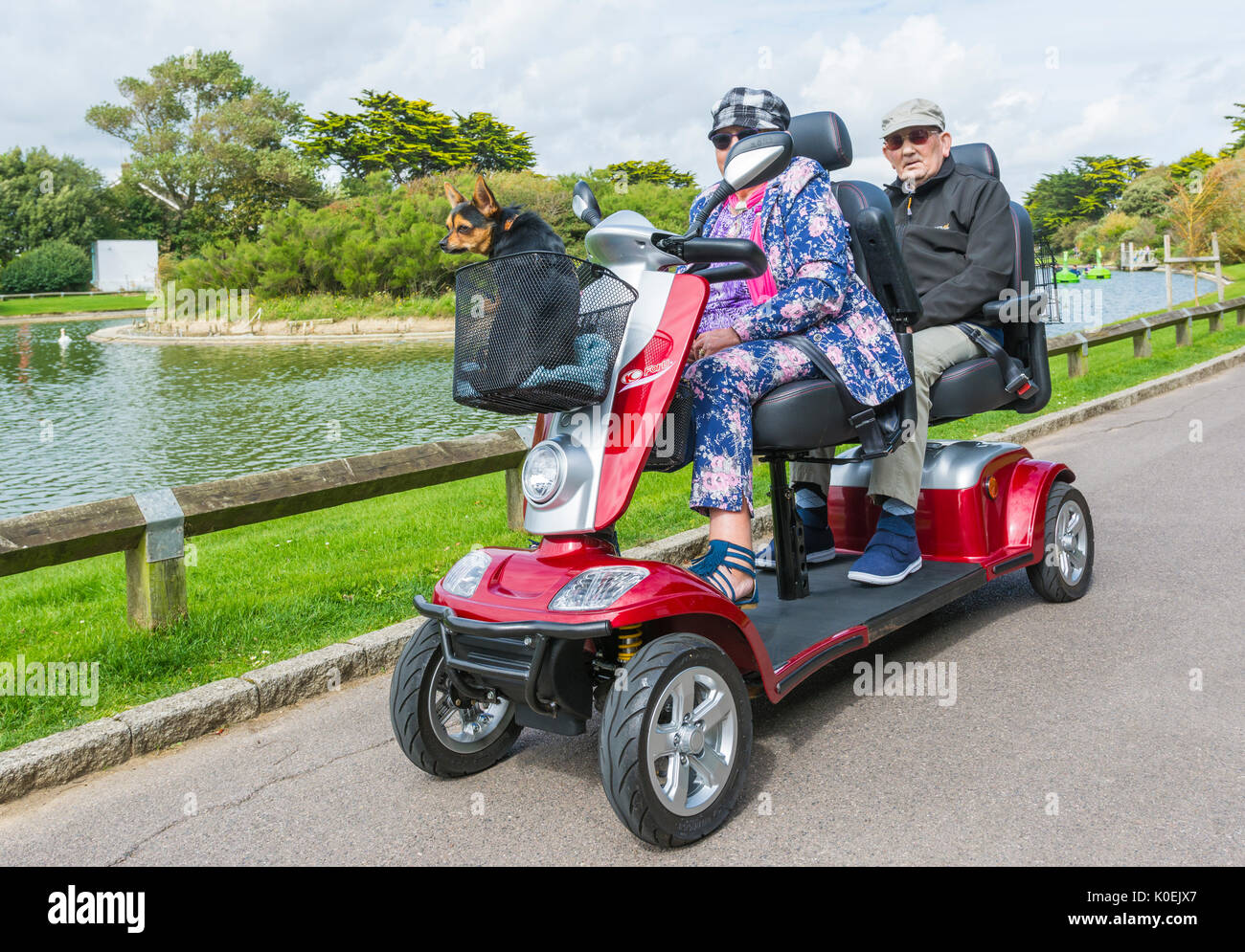 Kymco 2 seater electric mobility scooter with a dog riding in the front basket. Disability scooter for the disabled. Dual person. 2 seats. - Stock Image