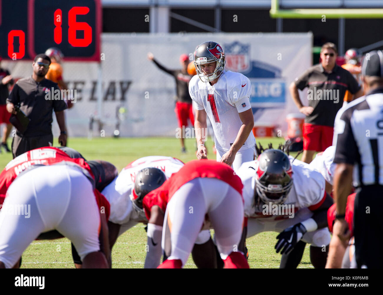 August 22 2017 Tampa Bay Buccaneers Kicker Zach Hocker 1 During