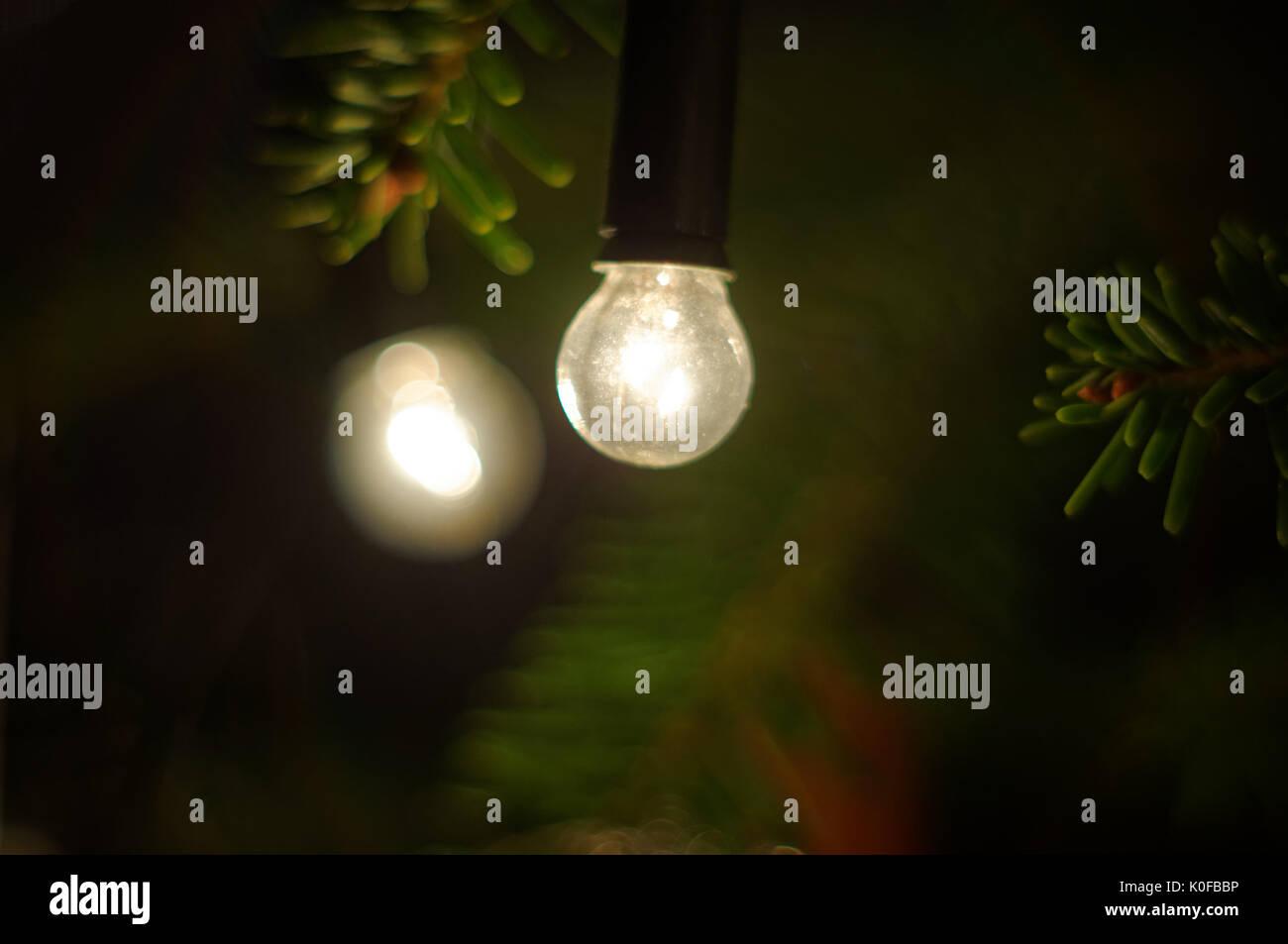 Christmas lamp hanging on a twig of a Christmas tree. - Stock Image