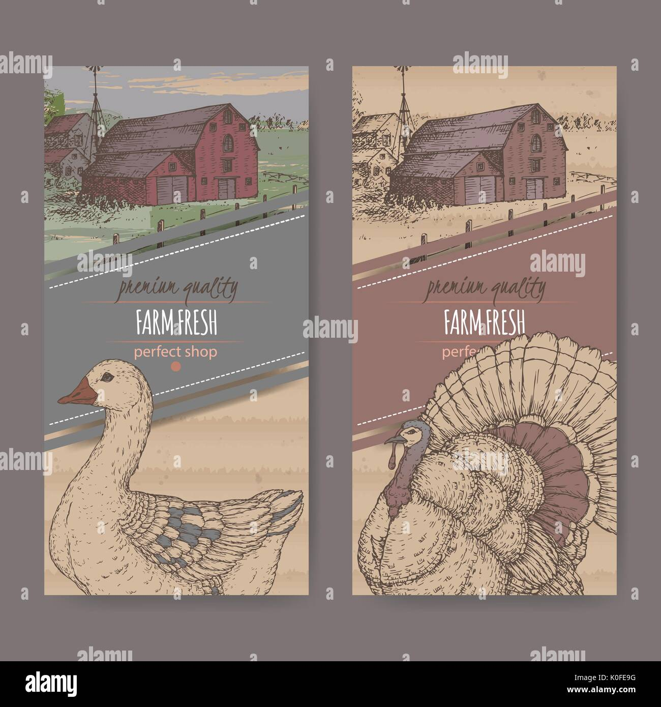 Two farm shop labels with color farmhouse, barn, goose and turkey on cardboard. - Stock Vector