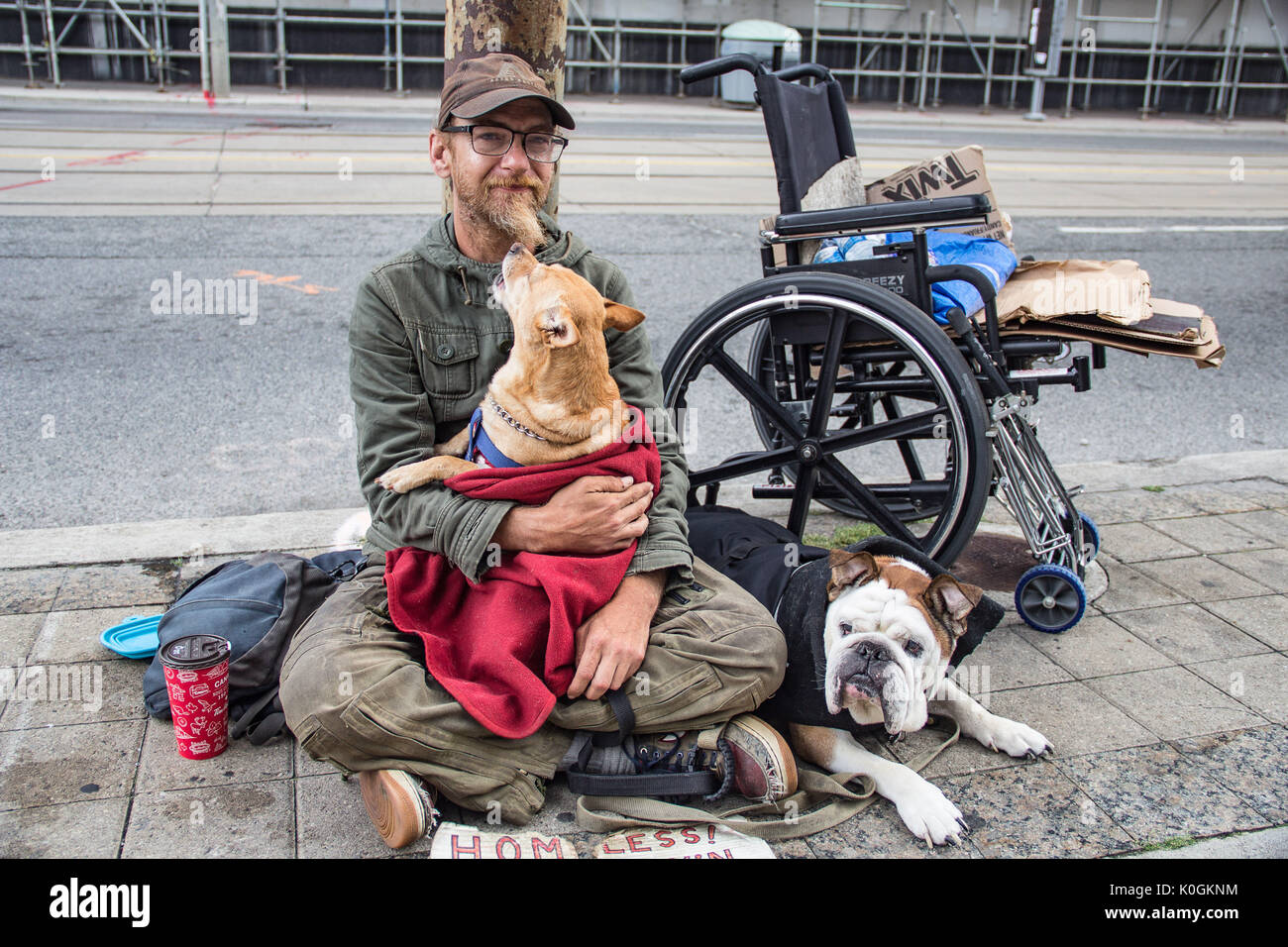 Street photography, a homeless man with dogs, urban scene, big city - Stock Image
