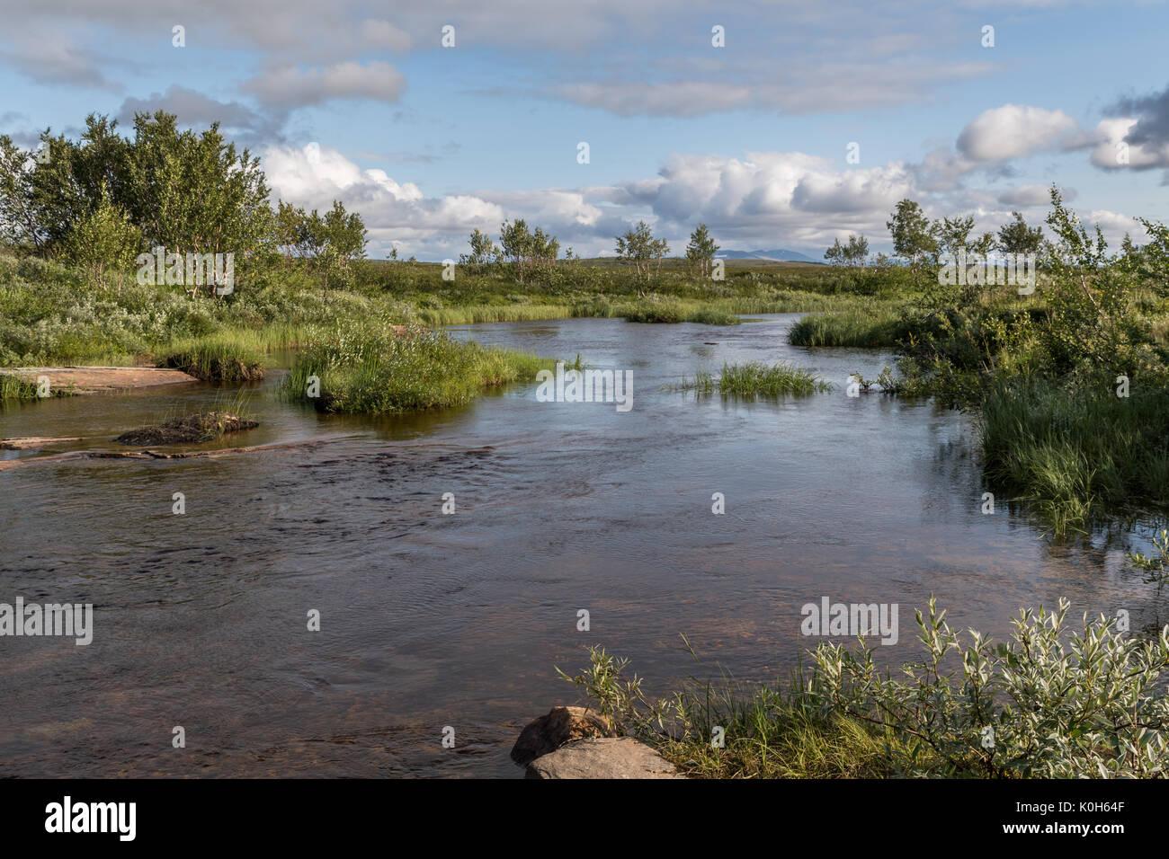 Small salmon river stream Finnmark Norway - Stock Image
