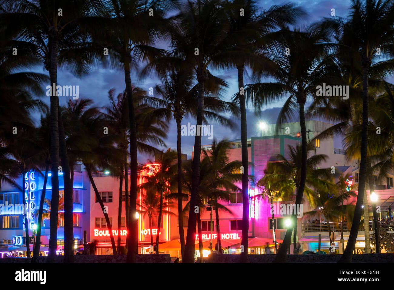 Miami Beach Florida Ocean Drive Art Deco District Lummus Park hotels neon signs palm trees dusk night nightlife Colony Boulevard Starlite hotel - Stock Image