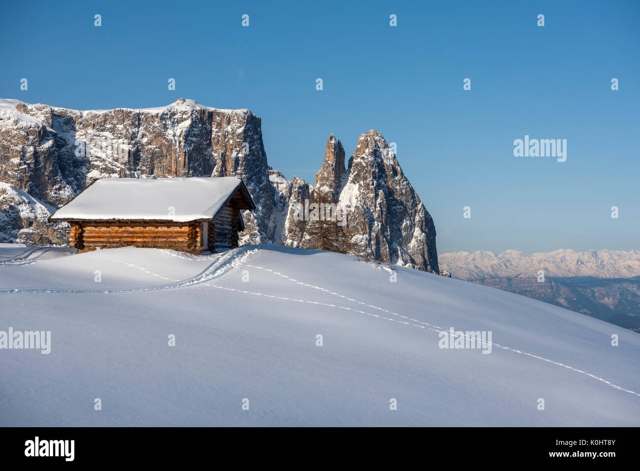 Alpe di Siusi/Seiser Alm, Dolomites, South Tyrol, Italy. Winter landscape on the Alpe di Siusi/Seiser Alm with the Stock Photo