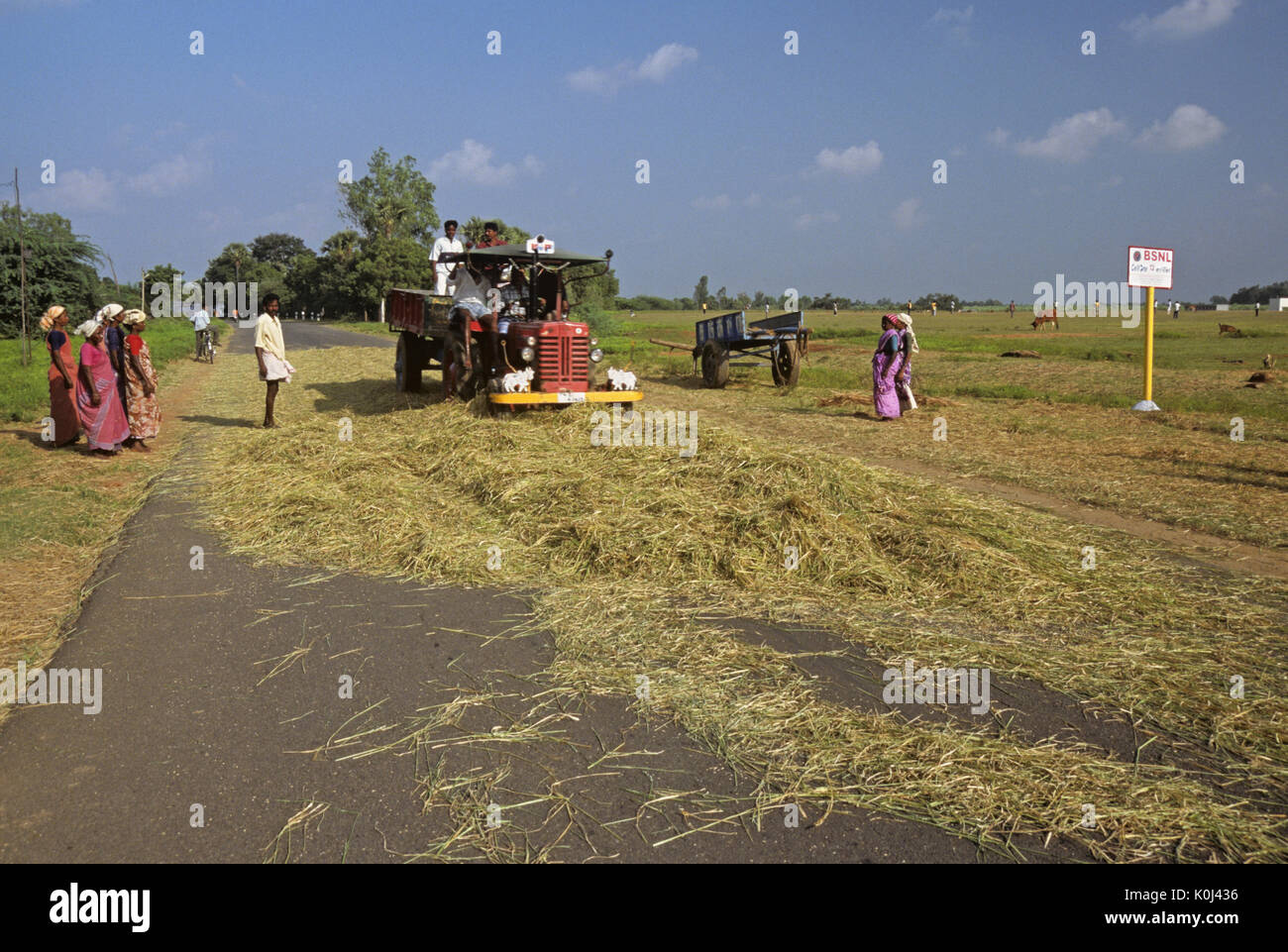 Tamil Nadu Farmers Stock Photos & Tamil Nadu Farmers Stock