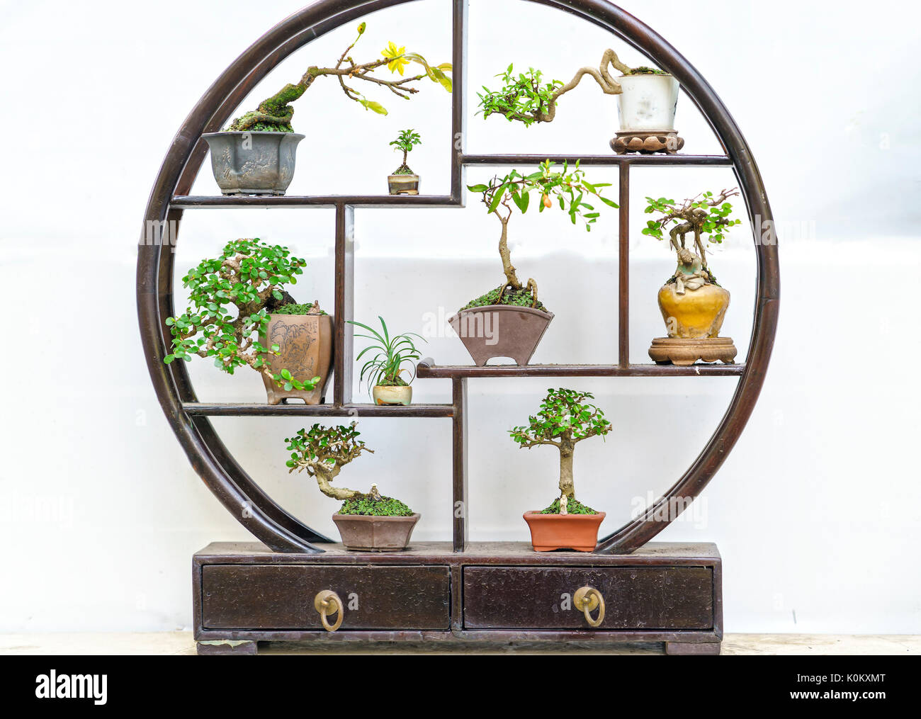 Miniatures Bonsai Pots In Decorative Circular Wooden Frame In The Stock Photo Alamy