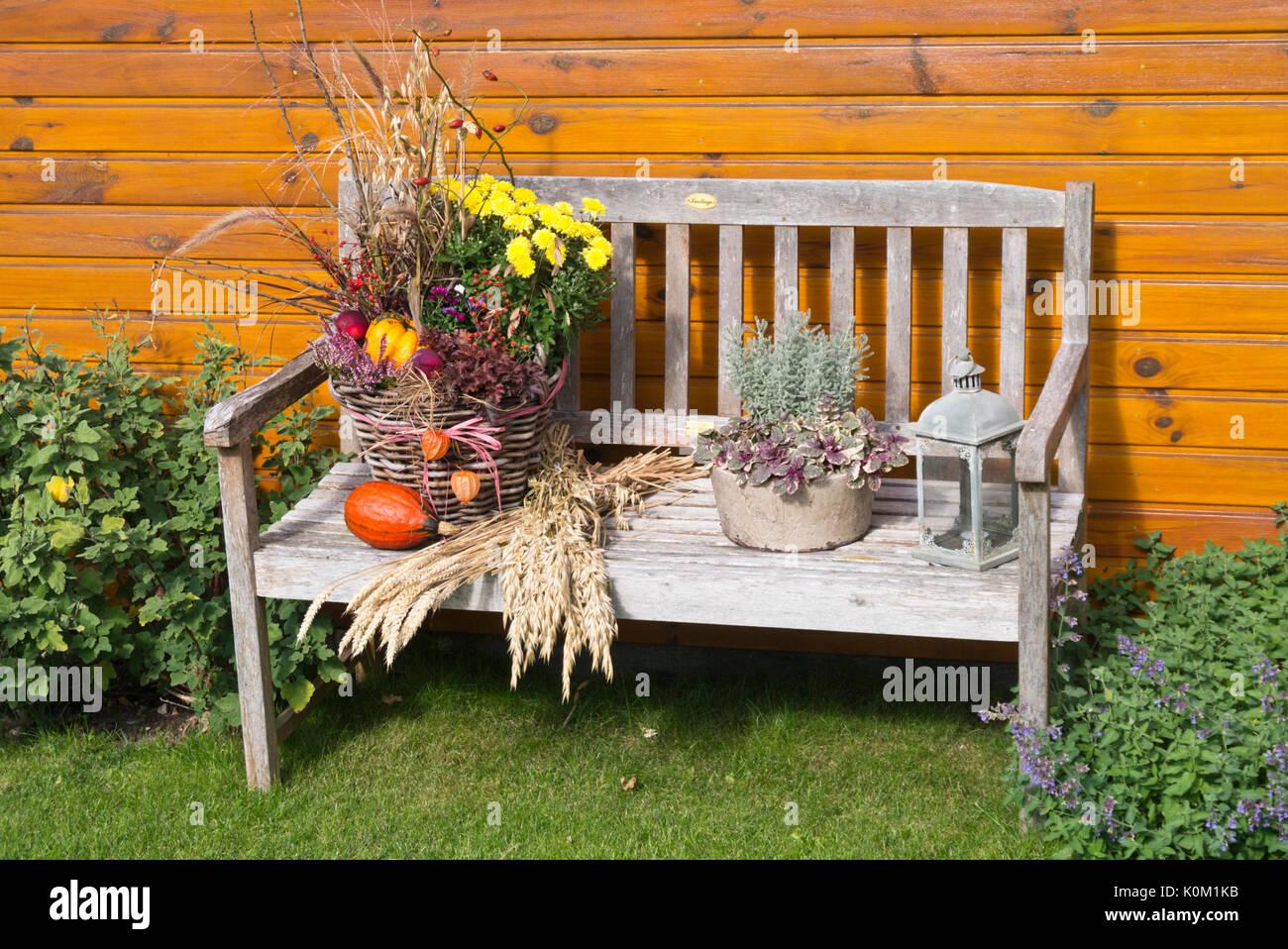 Garden Bench With Autumn Decoration Stock Photo Alamy