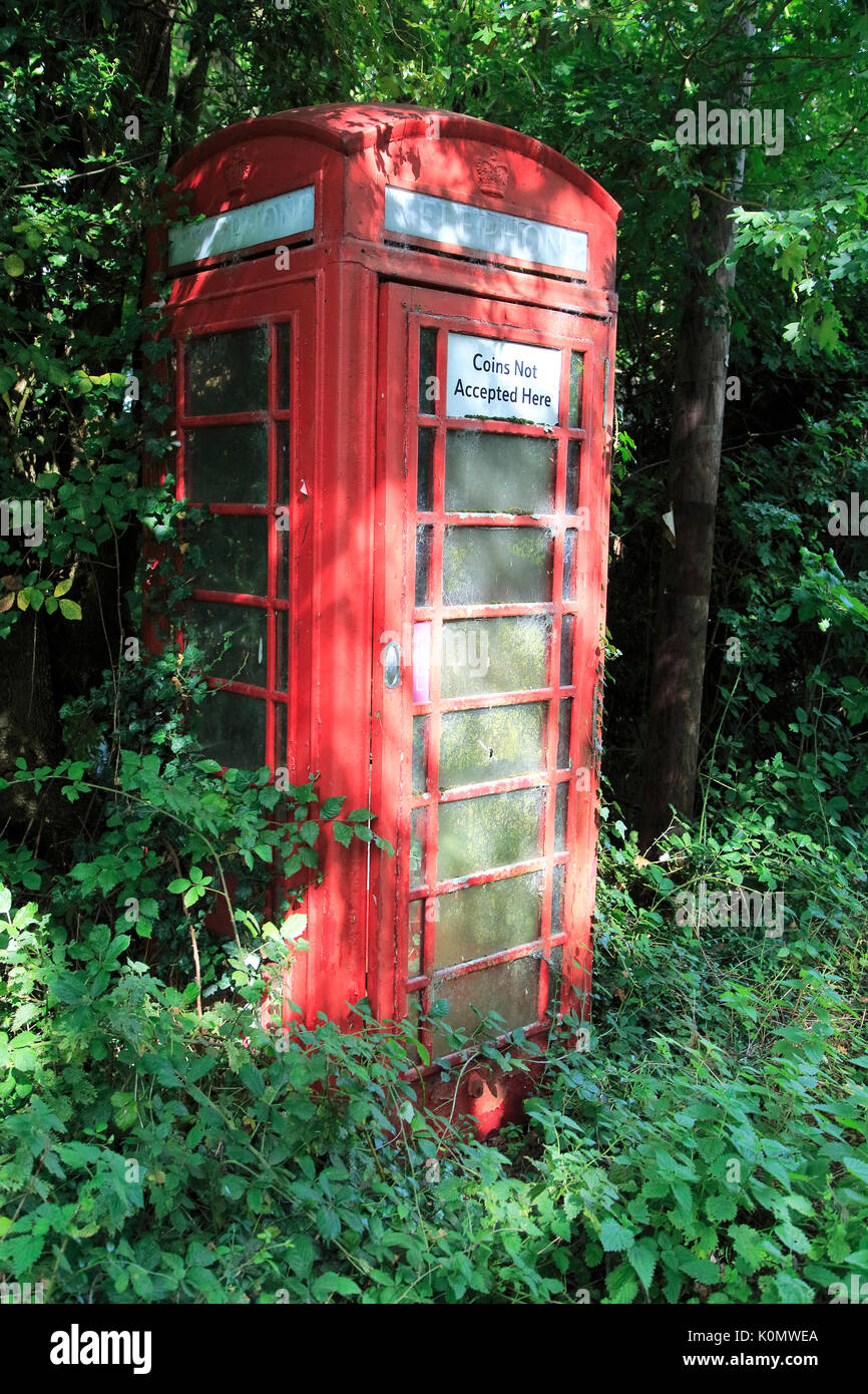 Overgrown rural red traditional phone box, Hoo, Suffolk, England, UK - Stock Image