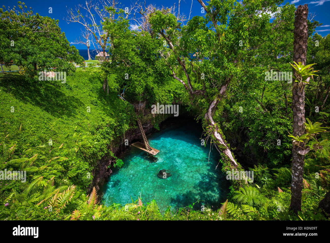 To Sua ocean trench - famous swimming hole, Upolu, Samoa Islands, South Pacific - Stock Image