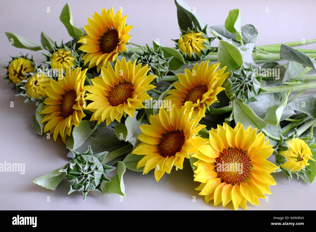 Amazing clay flower handmade product for home decor sunflower amazing clay flower handmade product for home decor sunflower bouquet bloom in yellow green leaf on white background beautiful artificial flower izmirmasajfo