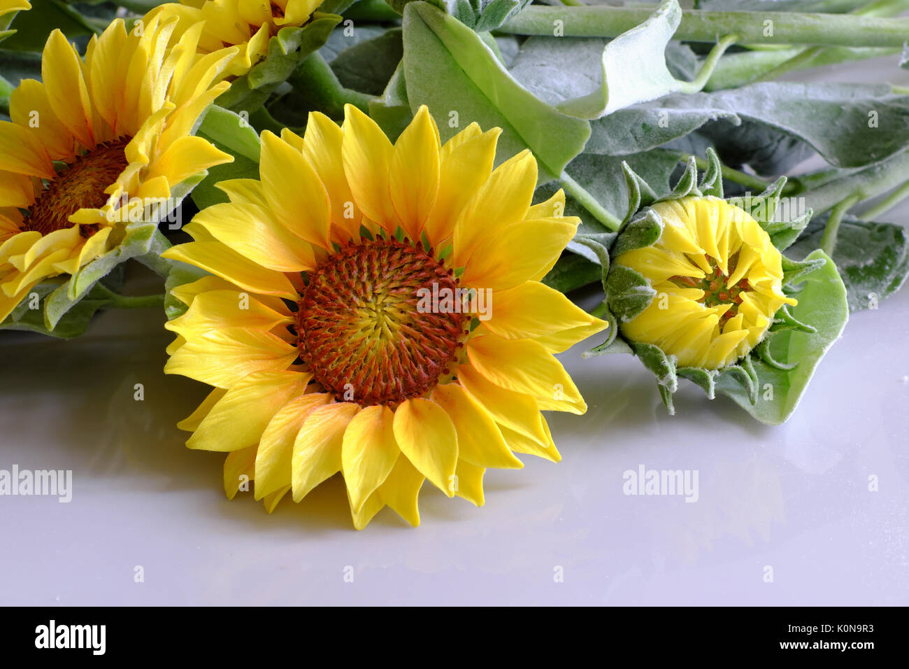 Amazing Clay Flower Handmade Product For Home Decor Sunflower Bouquet Bloom In Yellow Green Leaf On White Background Beautiful Artificial