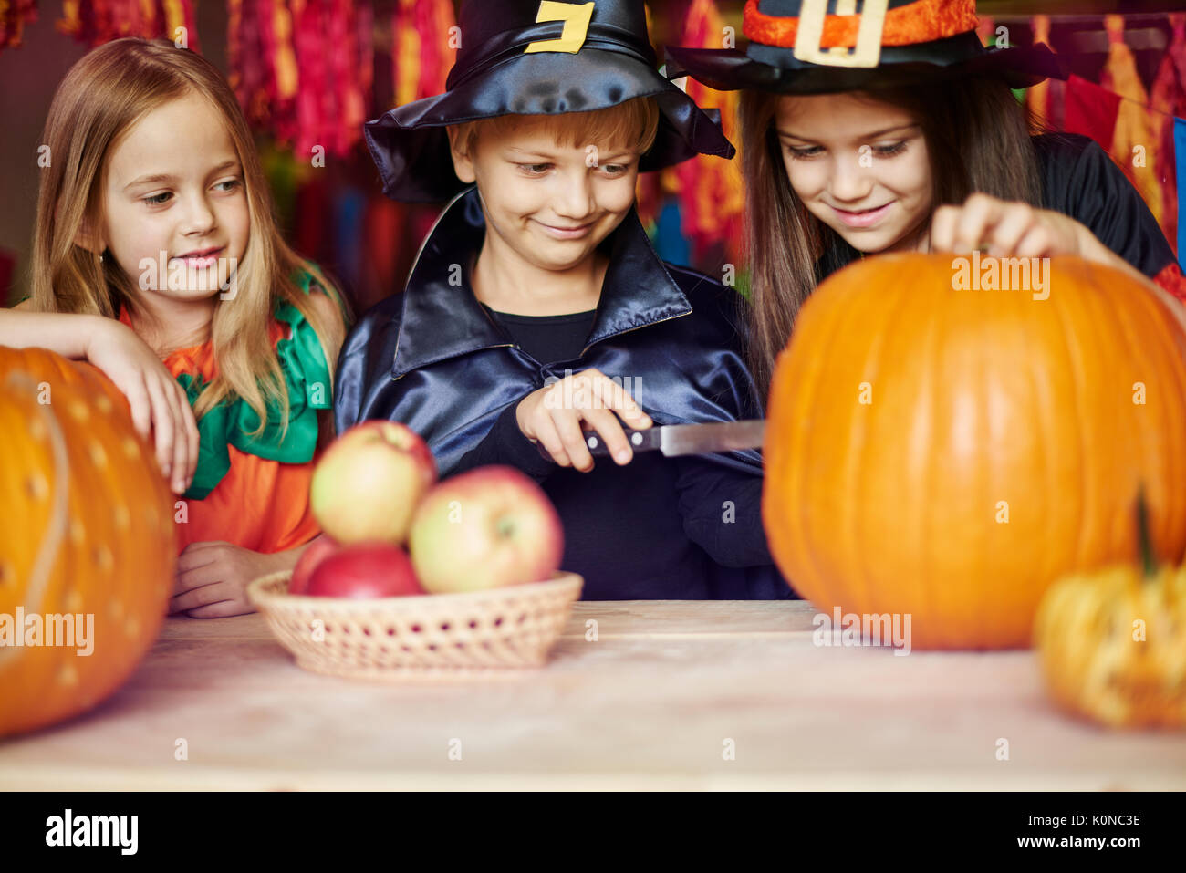 Carving a pumpkin is a duty of the boy - Stock Image