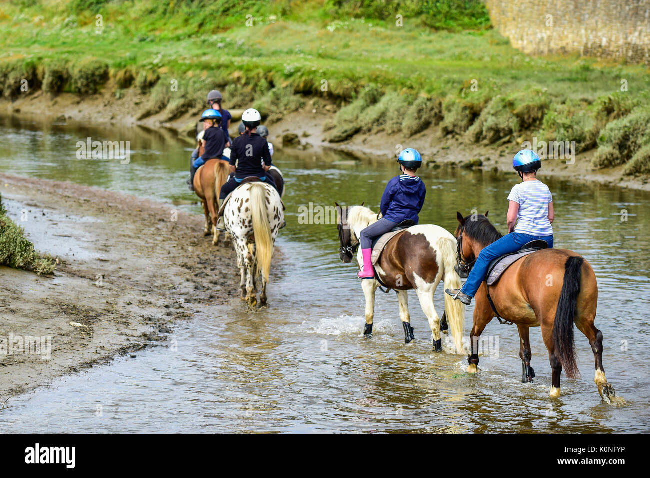 Pony trekking along the Gannel River and tidal estuary in Newquay in Cornwall. Stock Photo