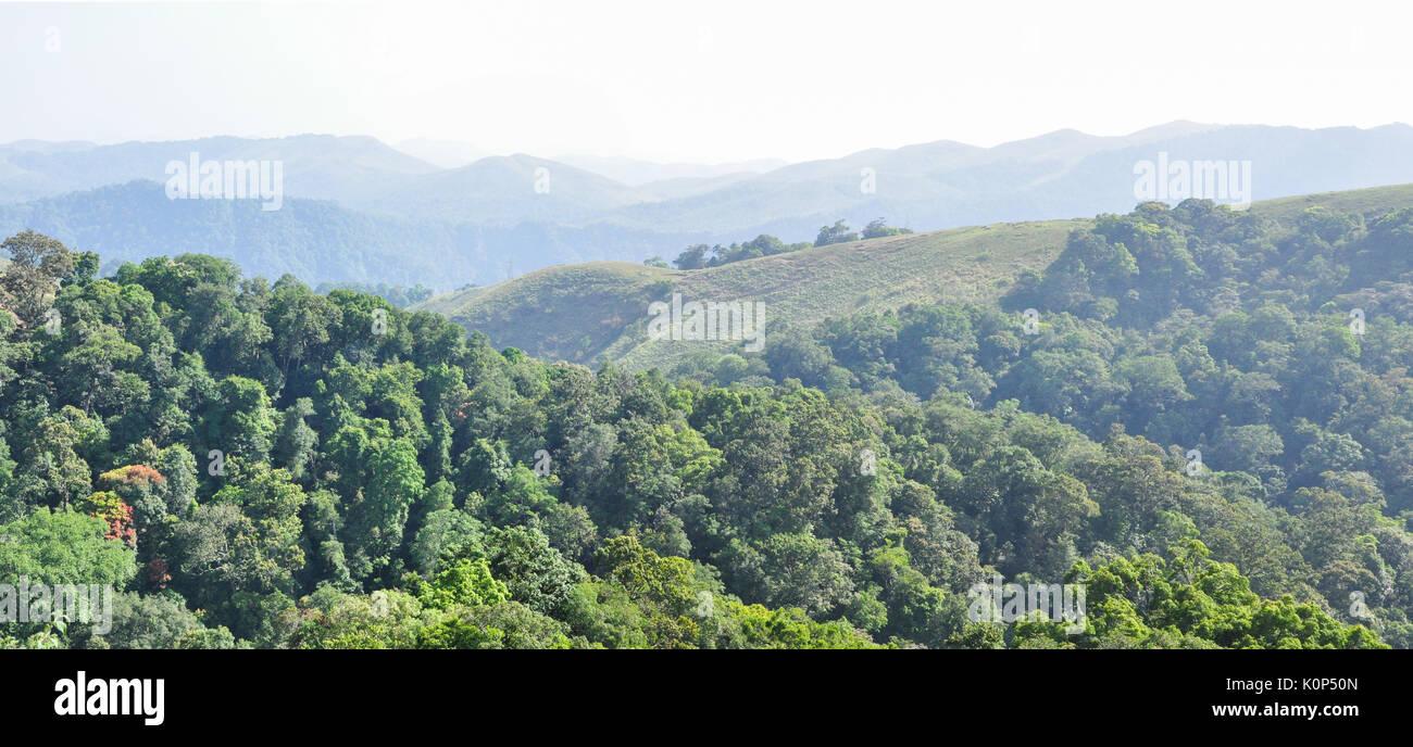 Gavi reserve forest in Kerala. Stock Photo
