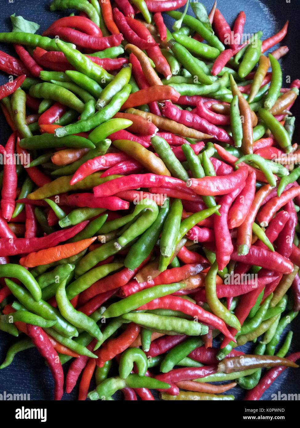 The fruit of the bird's eye chili is popularly used as a spice in South-east Asian cuisine. - Stock Image